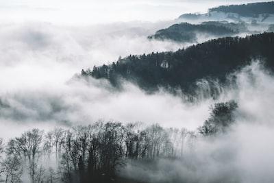 1297. Ködös tájakon
