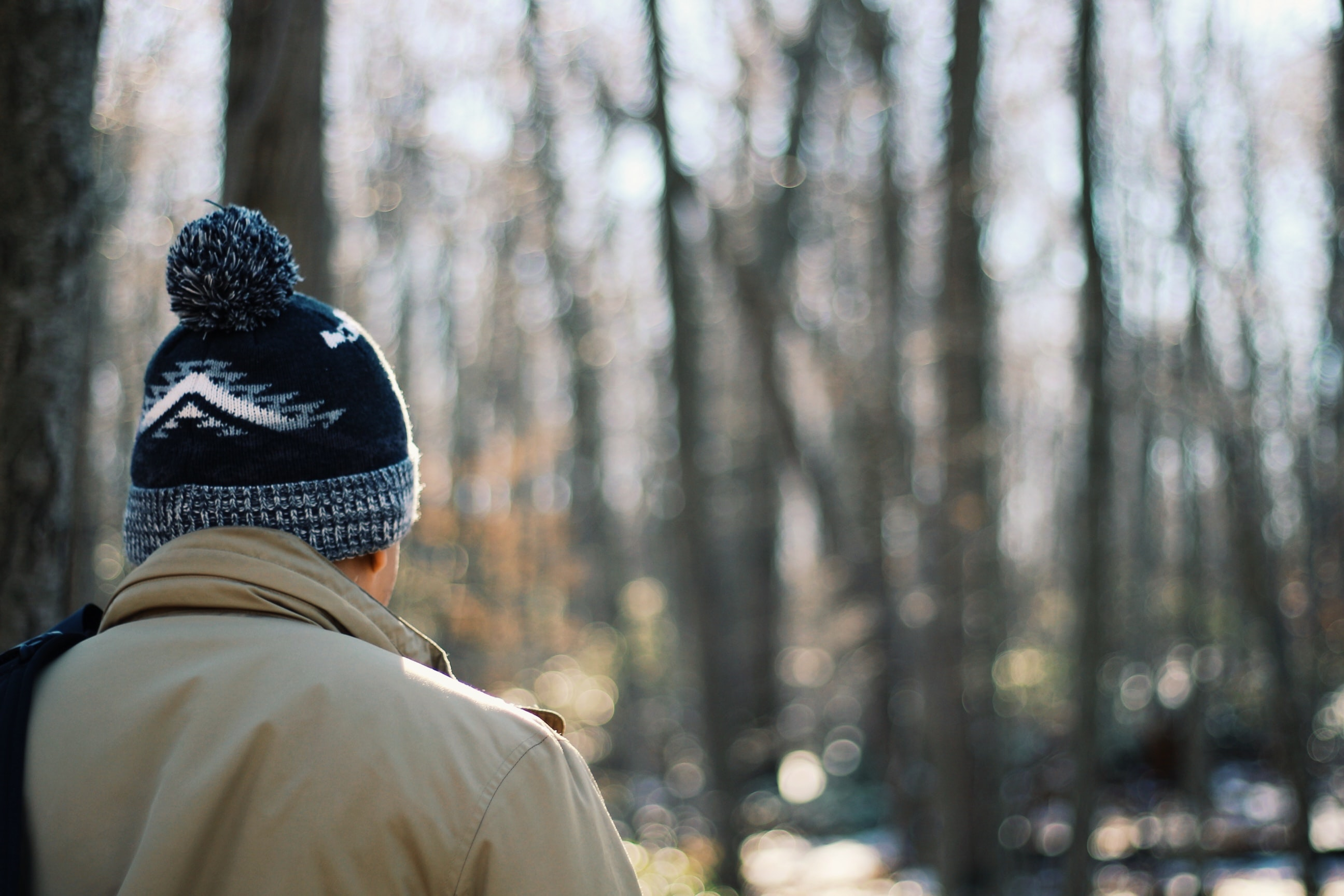 A man in a knit cap standing back to camera in a forest