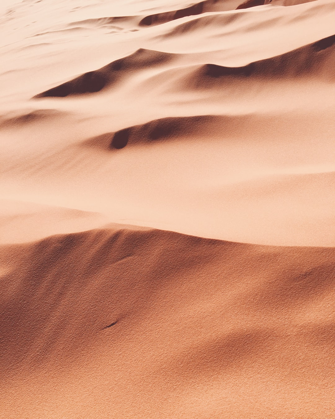 This is a cropped shot of some sand at the Coral Pink Sand Dunes State Park in Utah. However, it could look like large sand dunes from an aerial view also. Whether near or far, I love the softness of the texture and the crisp lines that could be changed instantly by a slight breeze. It's a magical, playful, pink place.