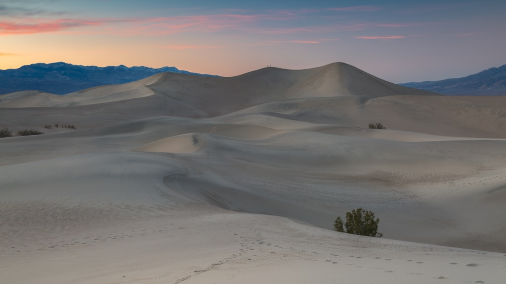 photo of footprints on desert during daytime