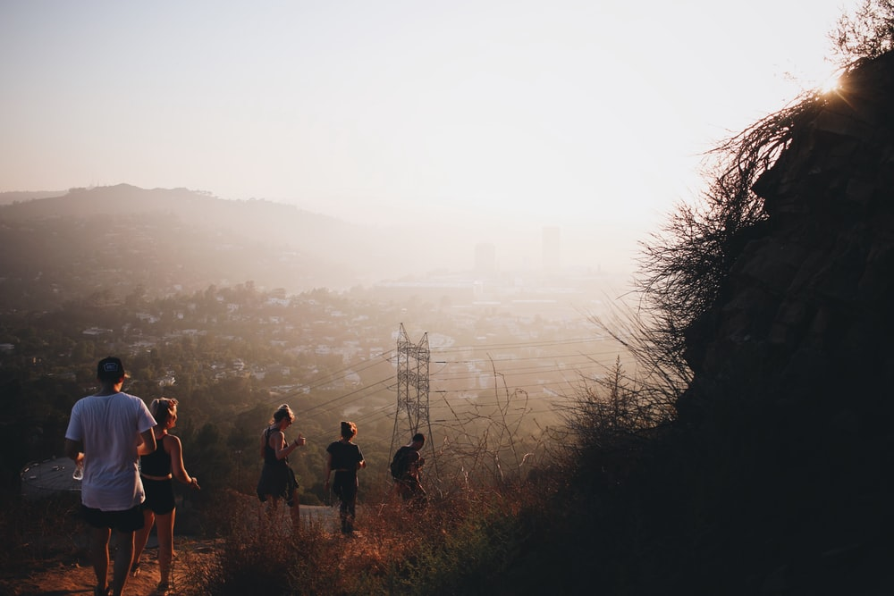 photo of five people walking down on pathway