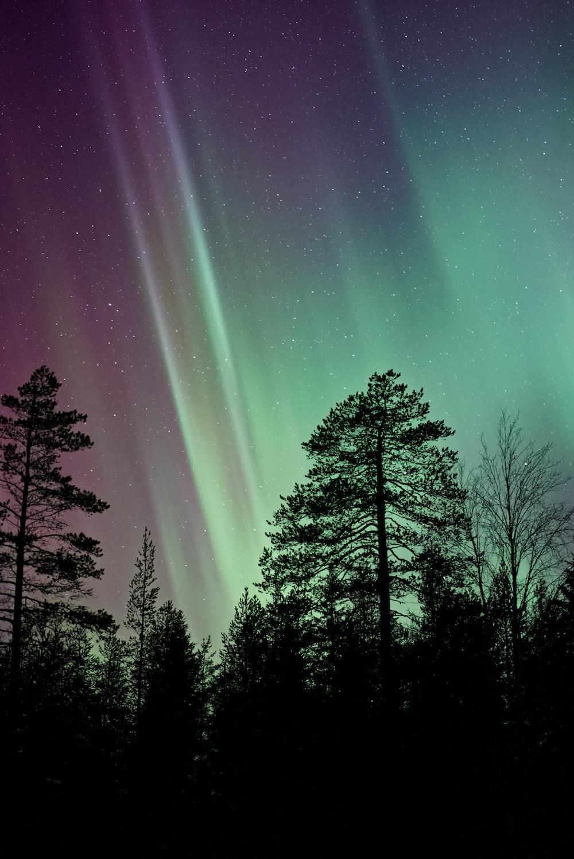 silhouette photo of aurora borealis