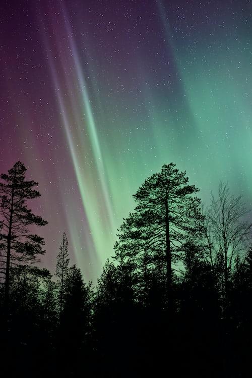 Звёздное небо и космос в картинках - Страница 5 Photo-1483086431886-3590a88317fe?ixlib=rb-1.2