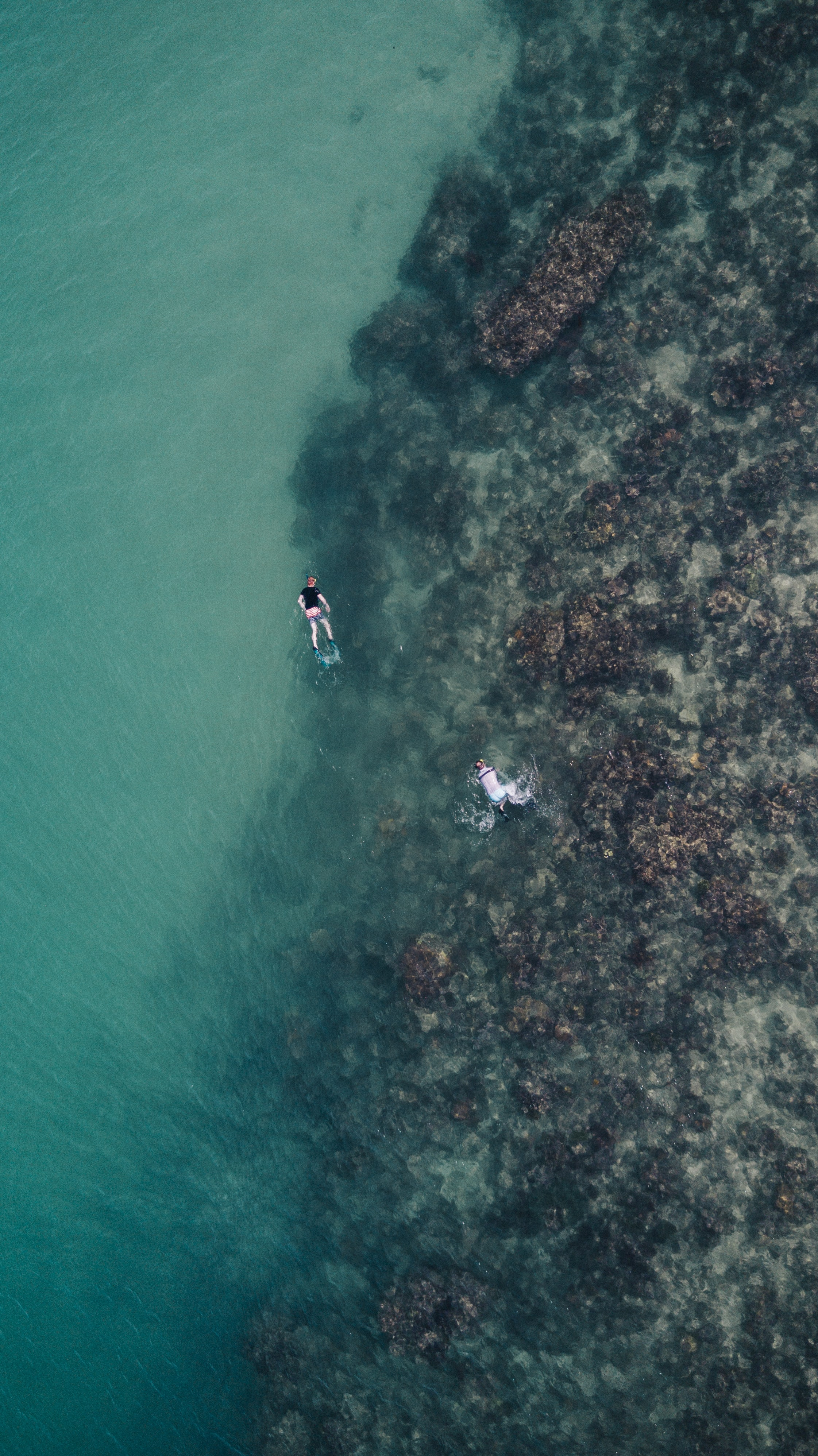 Drone aerial view of people snorkeling at the coral reef in Indonesia