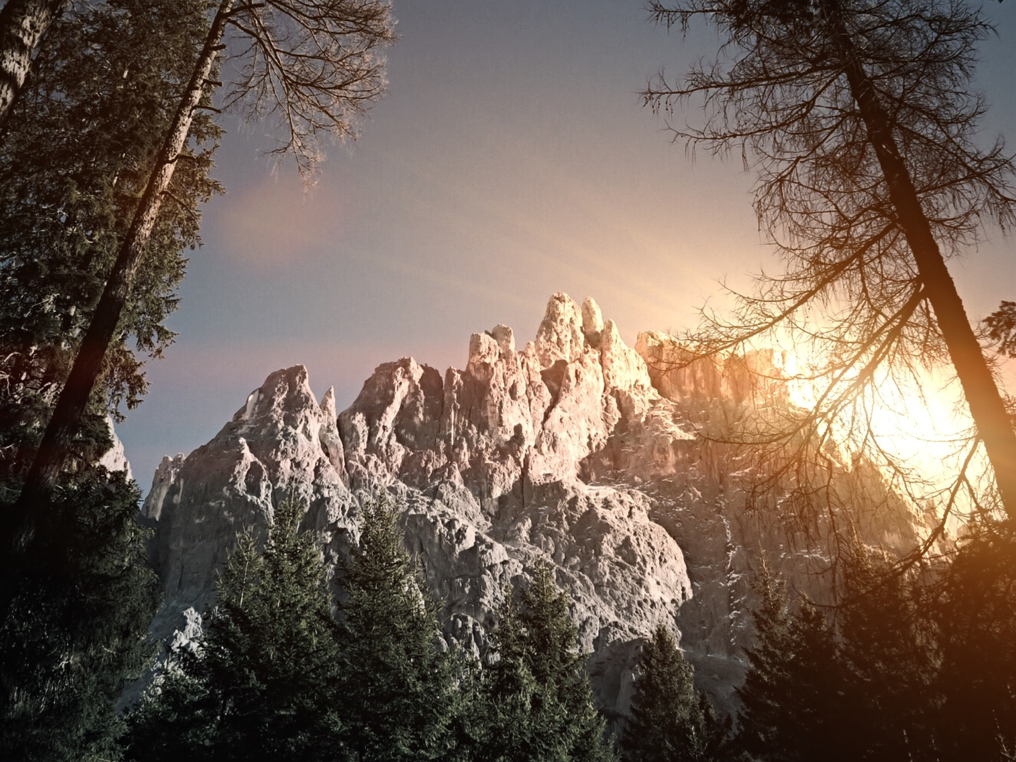 View of San Martino di Castrozza from forest floor at sunrise-or-sunset