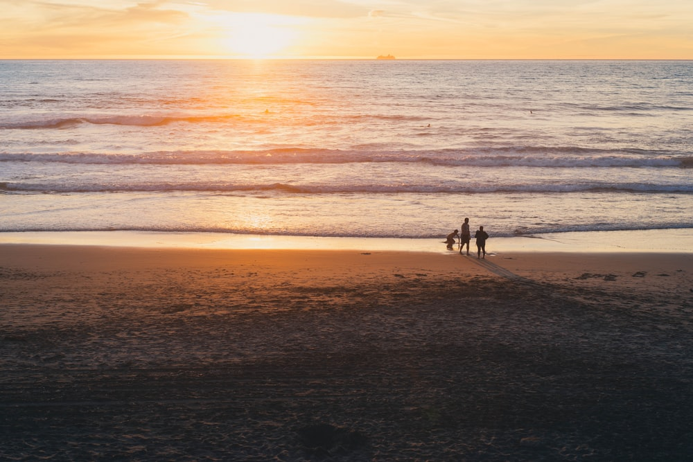 golden hour photography of three people on beach