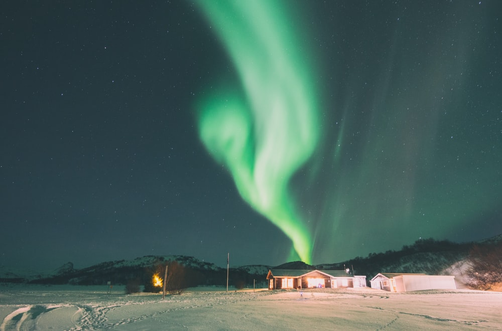 aurora borealis during winter
