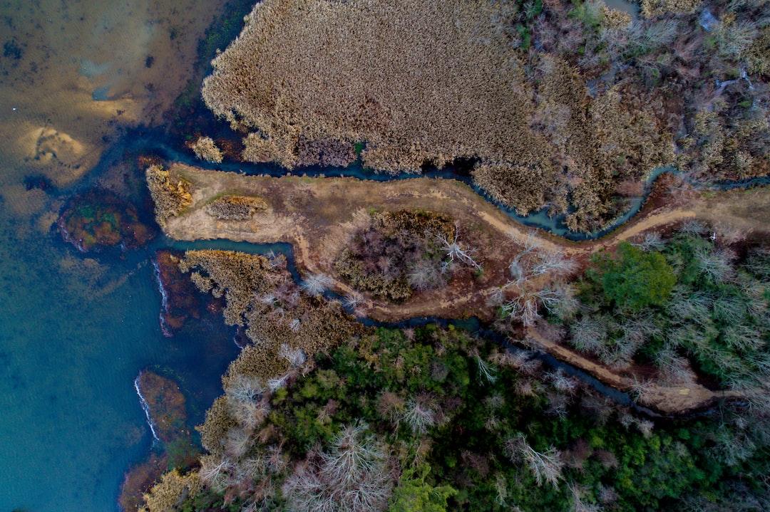 River estuary drone view