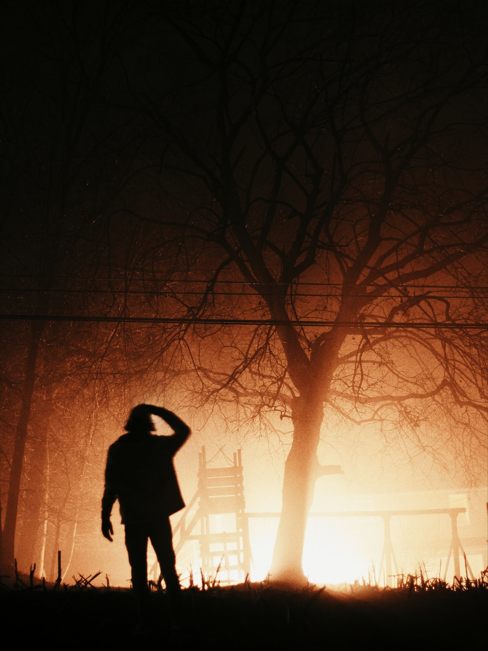 silhouette photo of person standing under the bare tree
