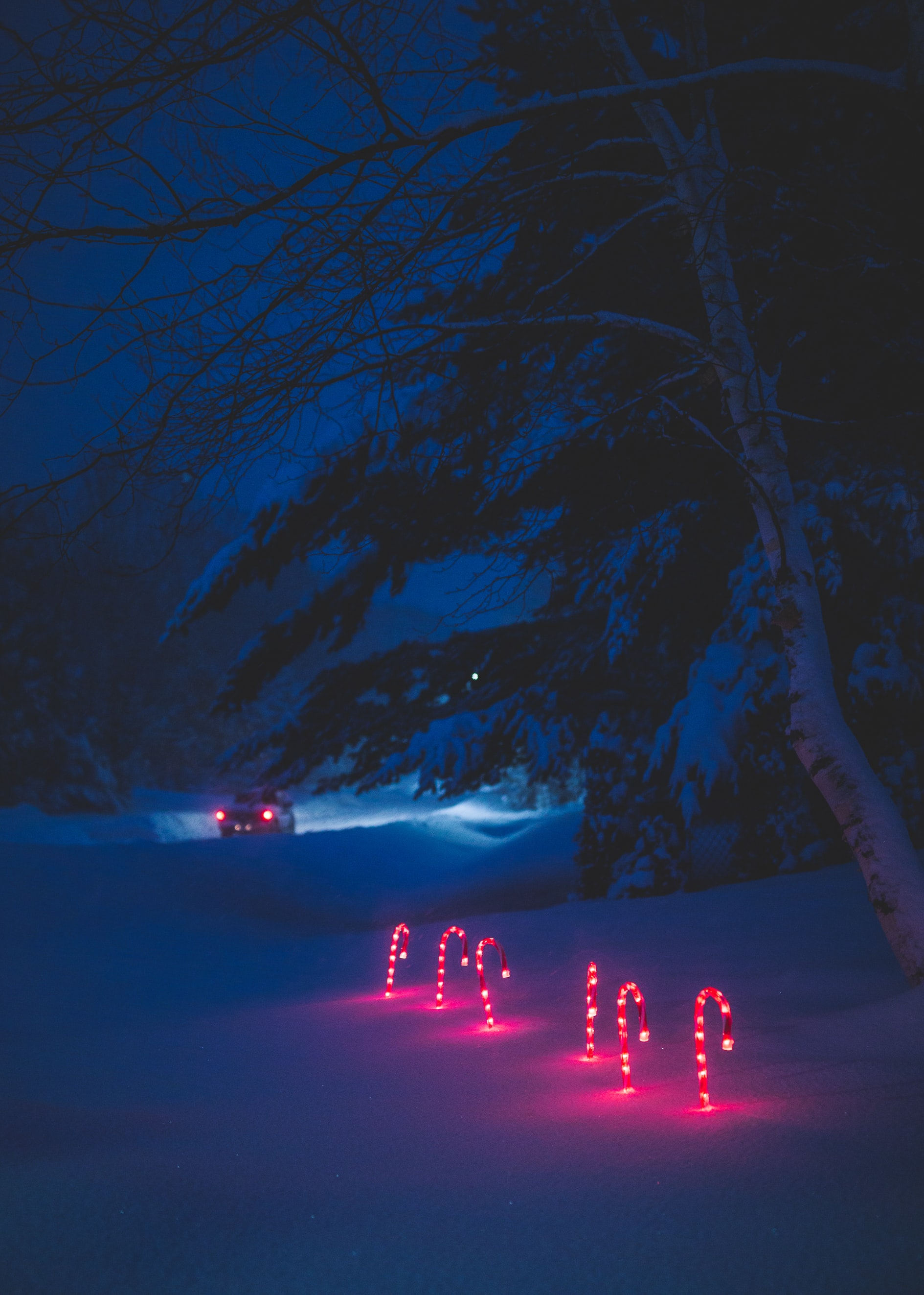 Car driving away with several red glowing candy canes sticked in the snow at night