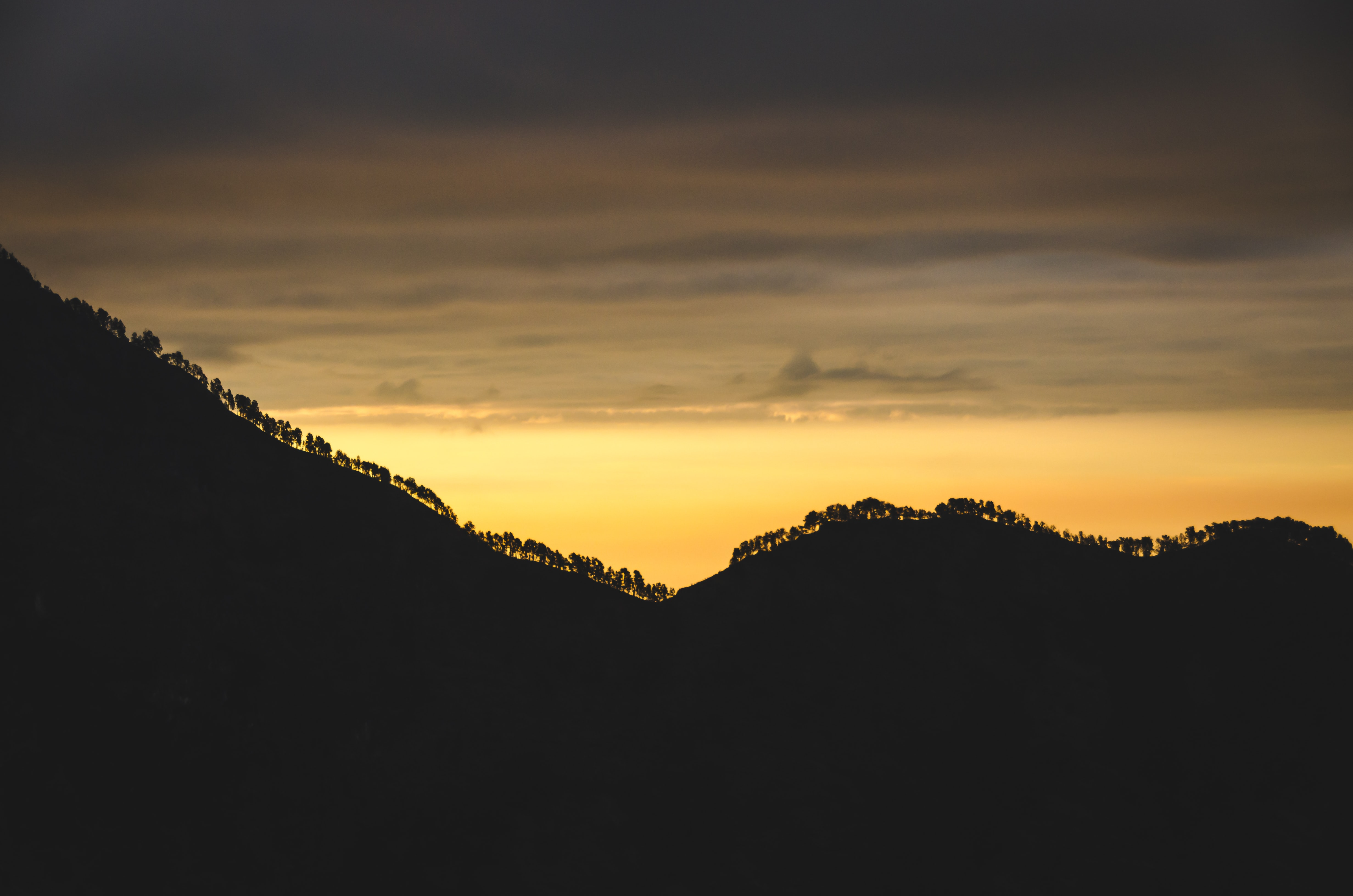 Silhouette tree-topped ridge from Mount Rinjani with a yellow sky that becomes cloudy and gray