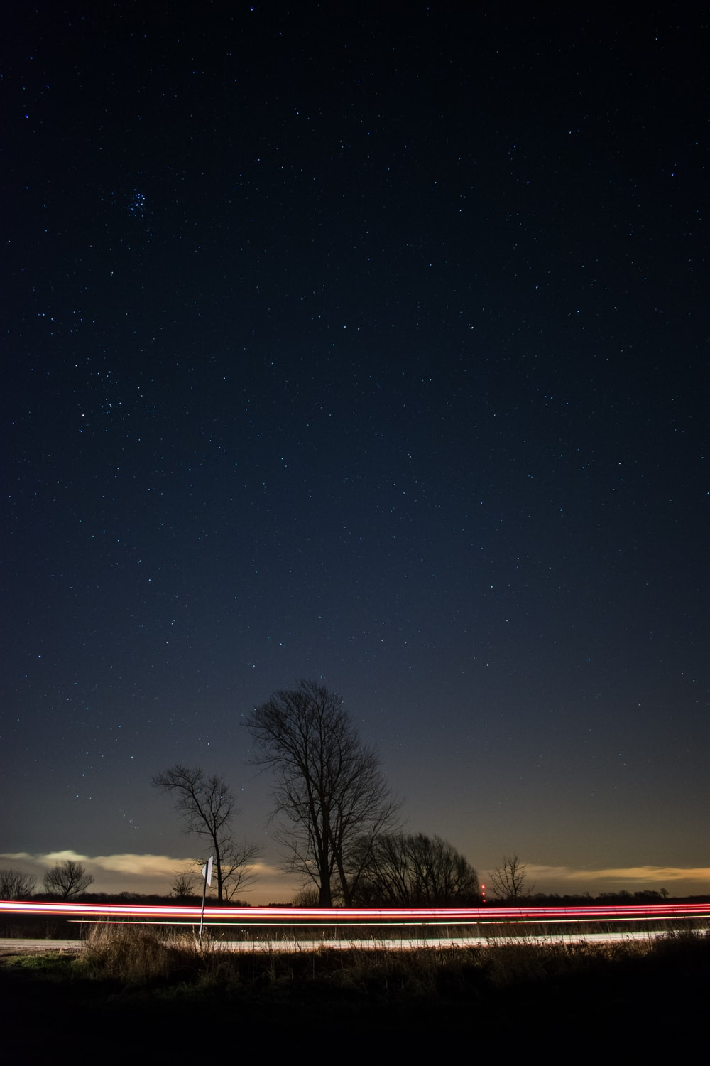 time lapse photography of vehicle crossing between bare trees under starry night