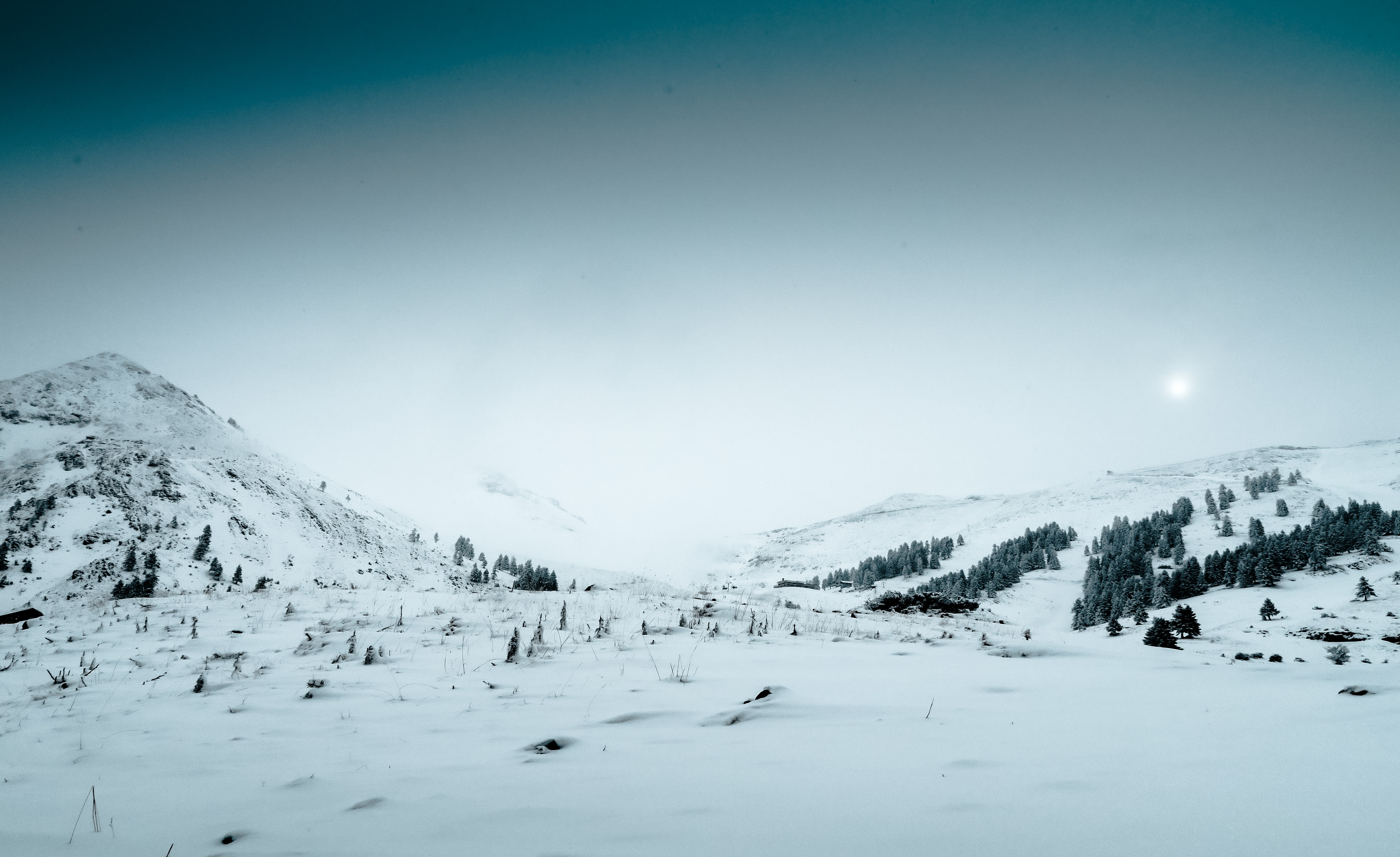 Shrubs and evergreen trees under a thick snow blanket in Kalavryta