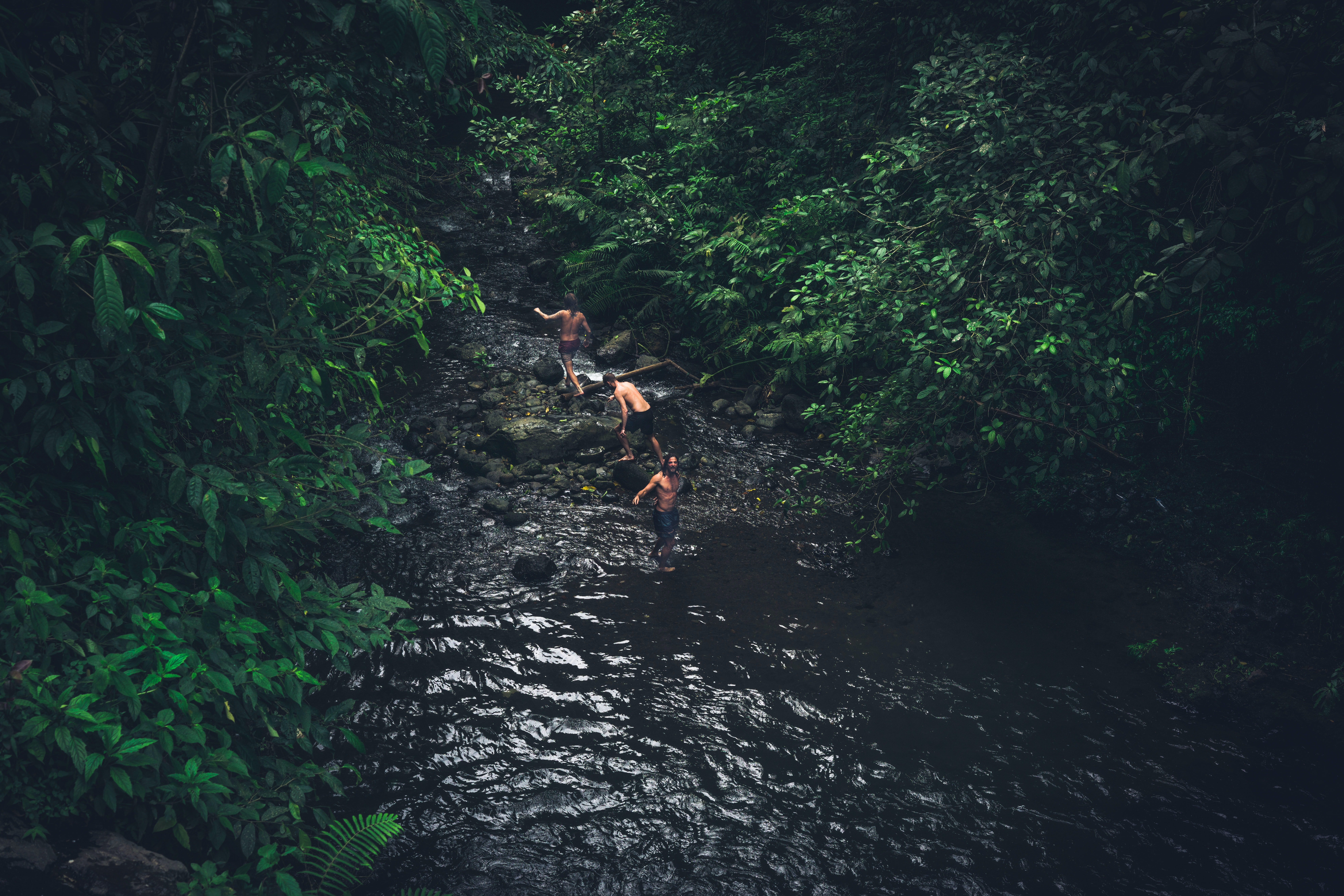 A group of shirtless male friends climbing some river rocks and into a forest of trees
