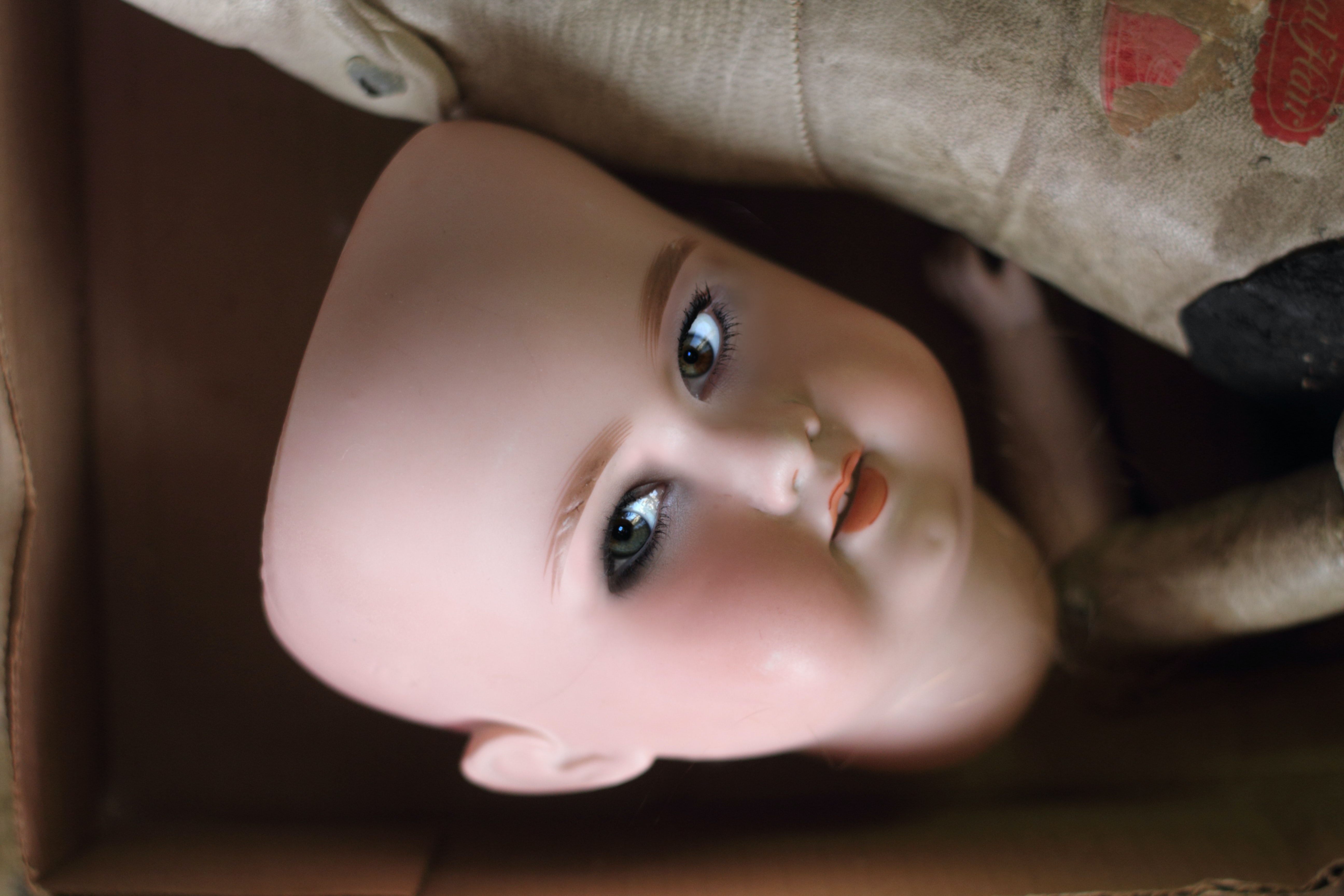 closeup photo of doll face