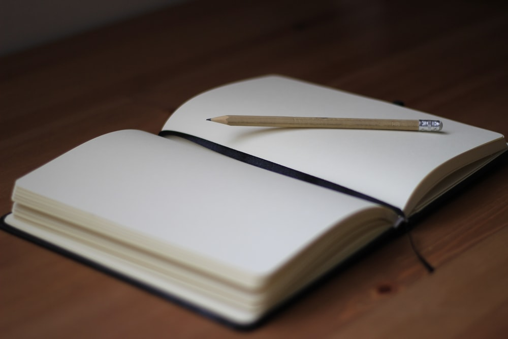 brown pencil on white book page