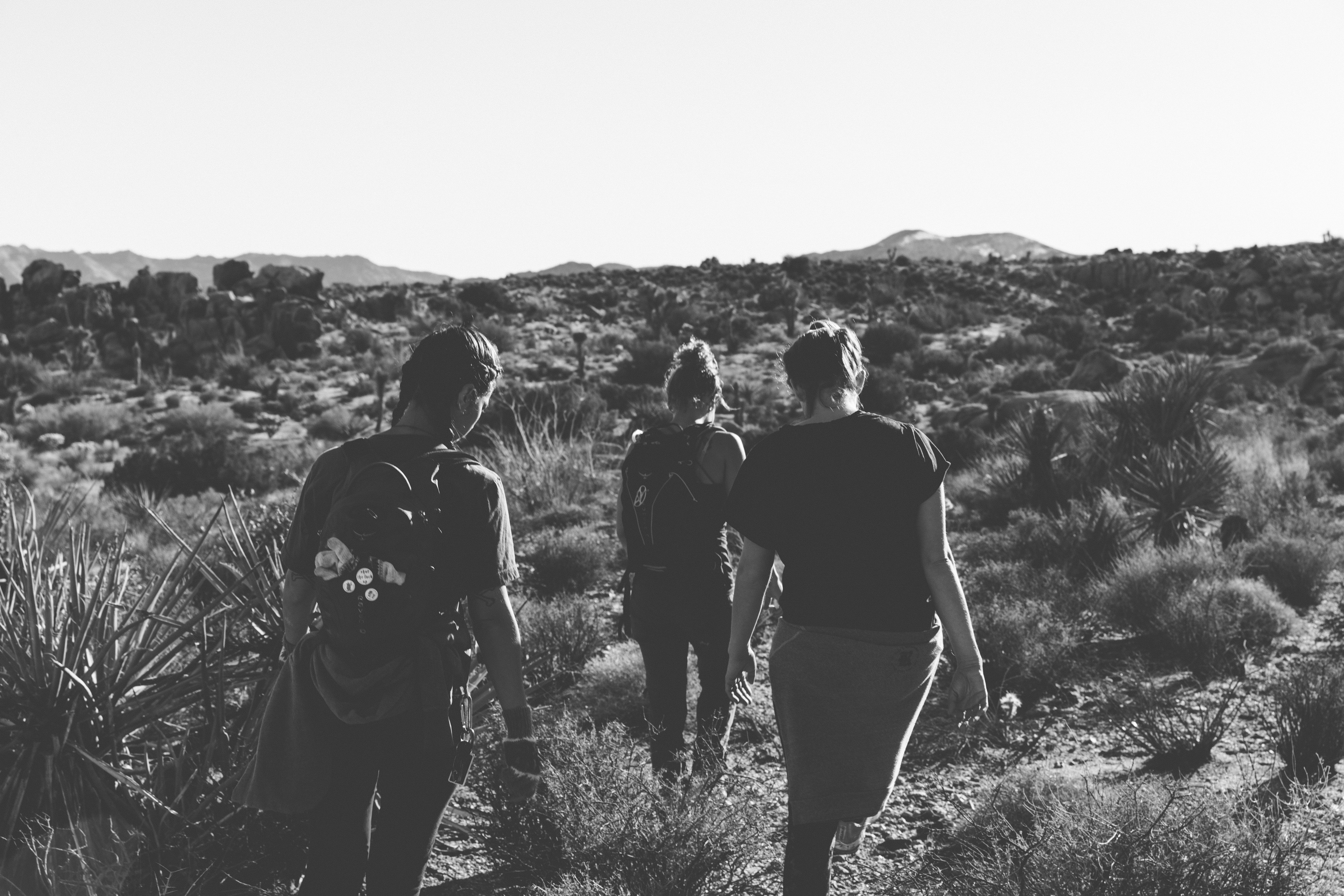 Three young people hiking through the dry grassland in Joshua Tree National Park
