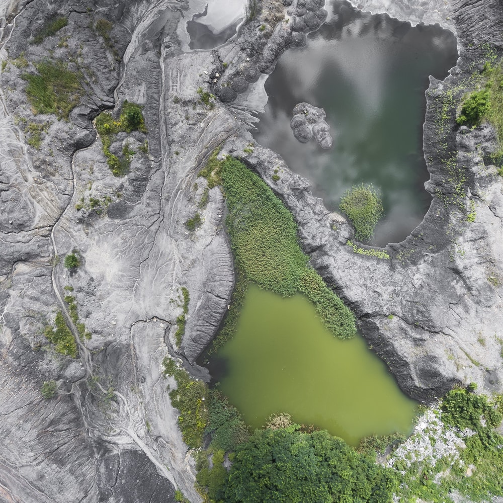 bird's eye photo of mountain surrounded by trees
