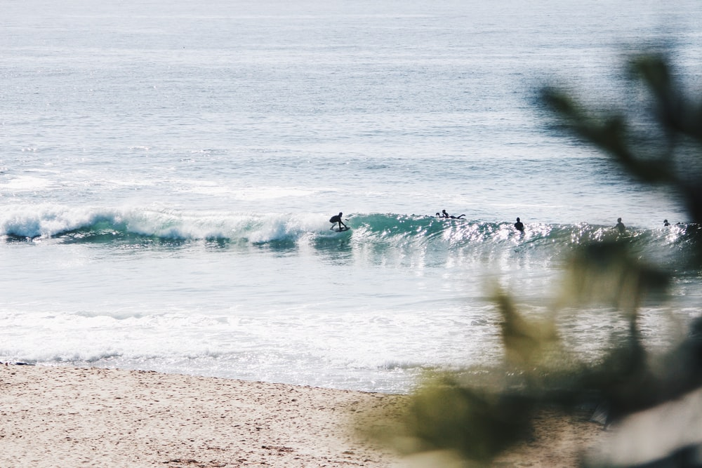 people surfing in the beach during daytime