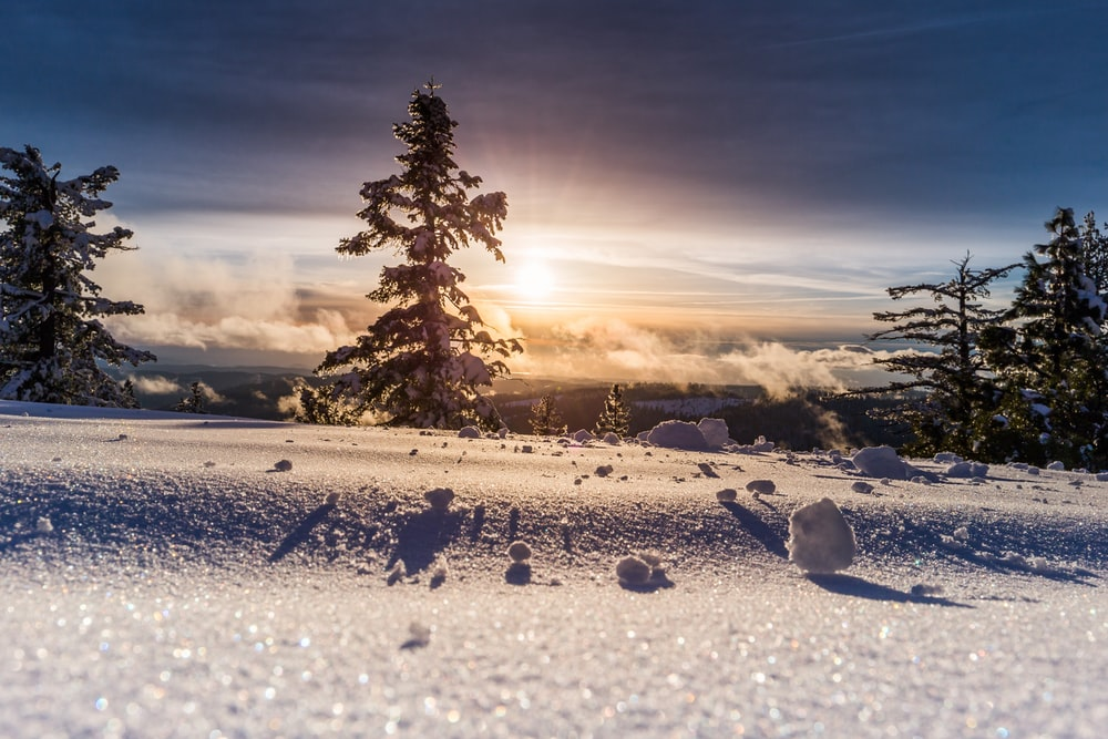 low angle photo of snow field