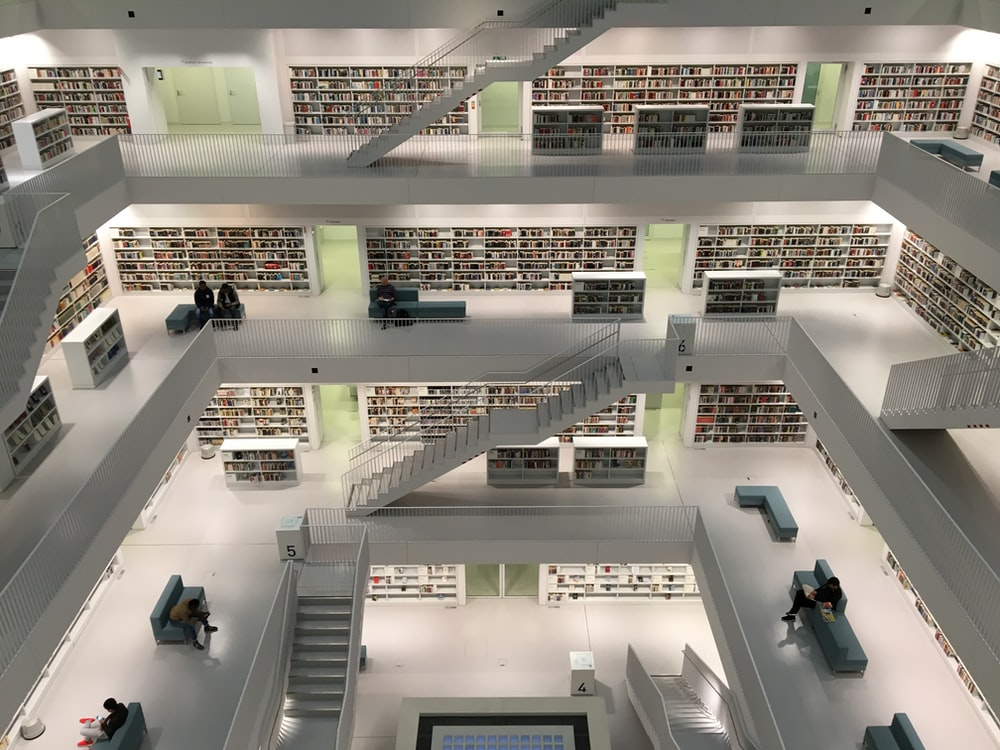 architectural photography of library