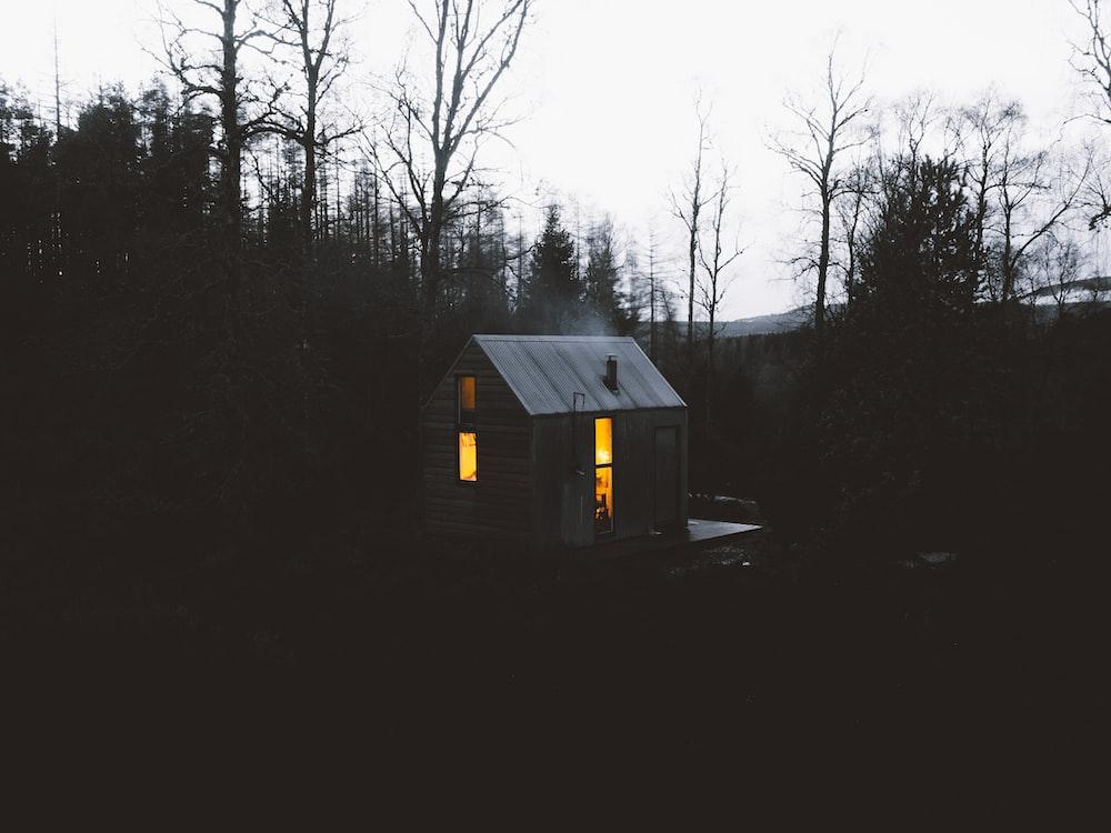 grey wooden shack