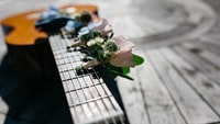 shallow focus photography of pink flower on guitar neck