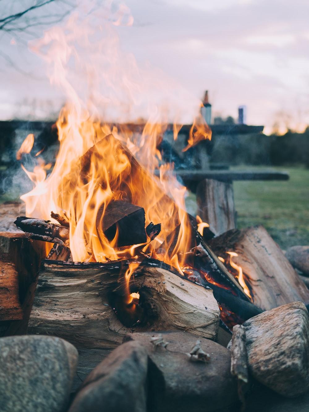selective focus photography of bonfire