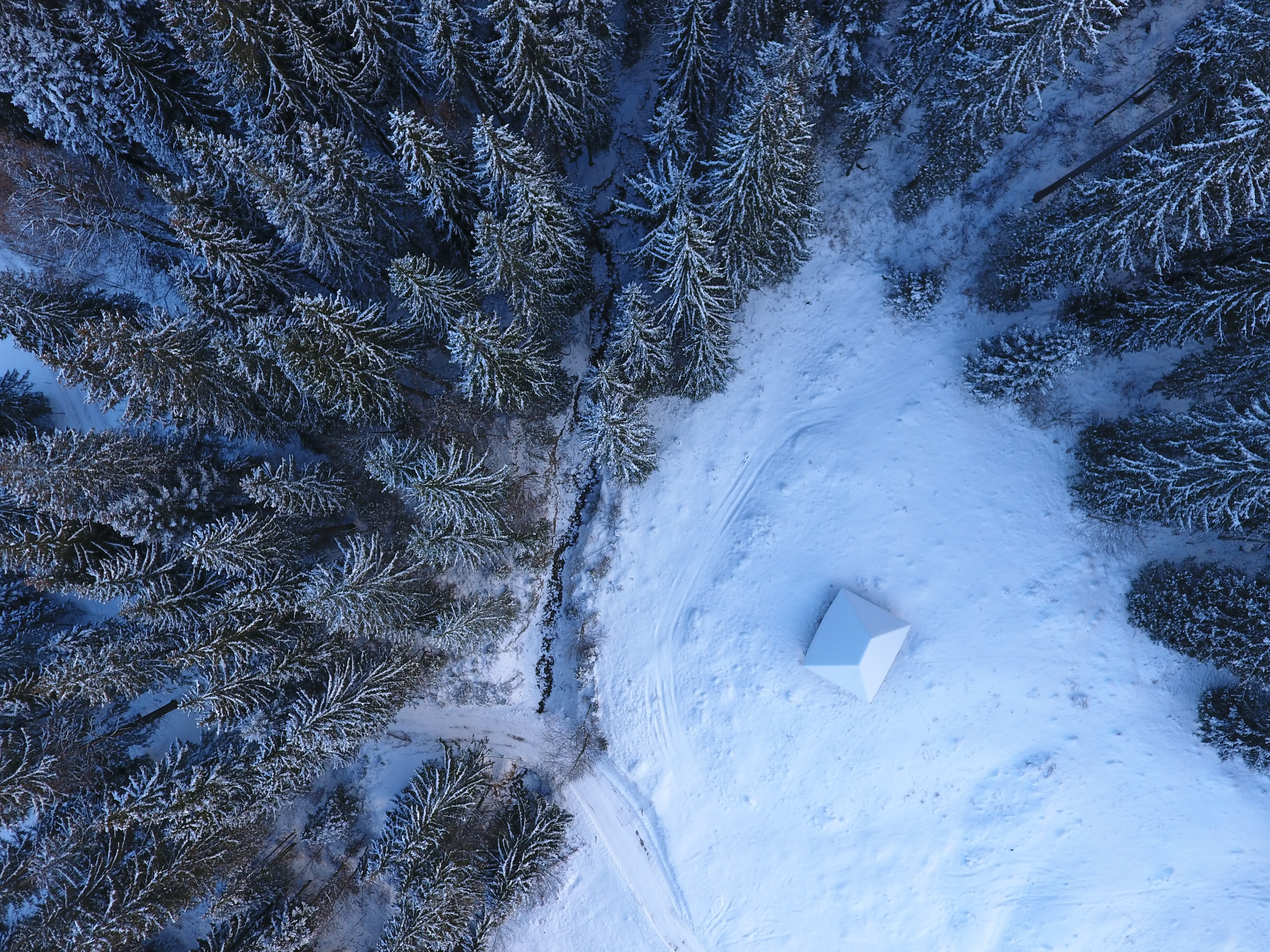 A drone shot of a small building at the edge of a snowy forest