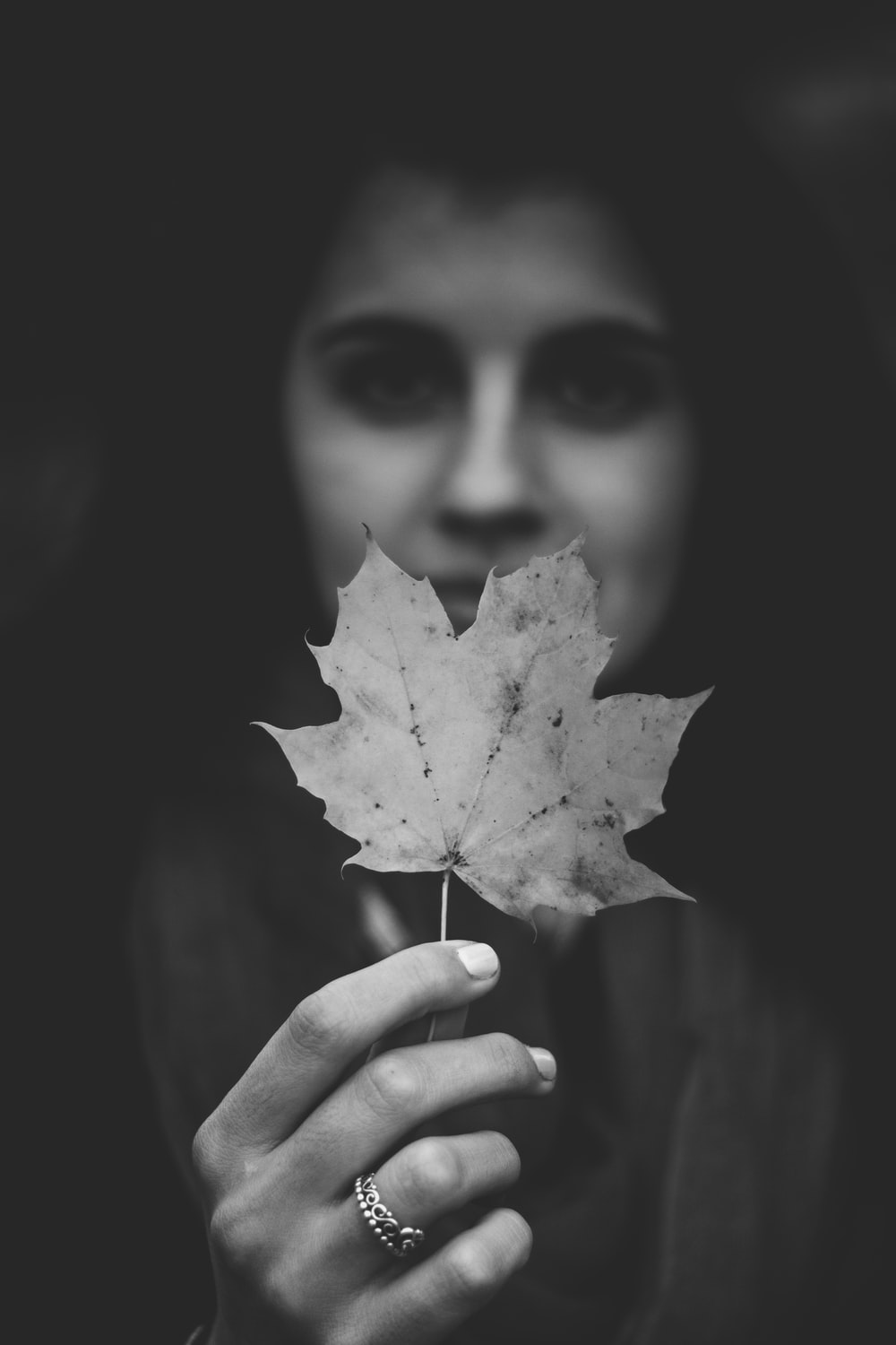 grayscale photography of maple leaf