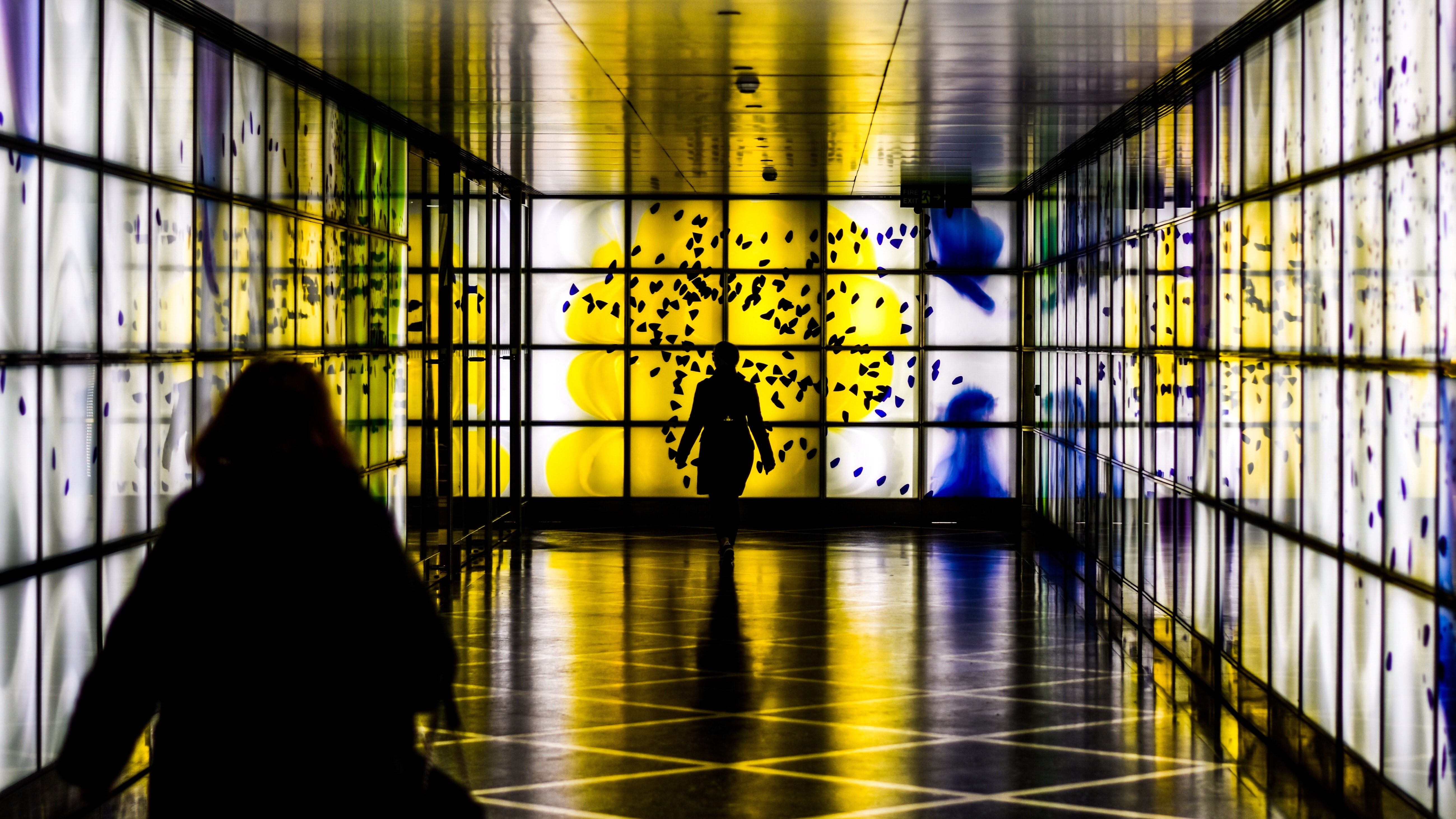 silhouette photography of person walking in room