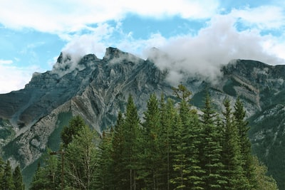 green trees and brown mountains under white sunny cloudy sky banff teams background