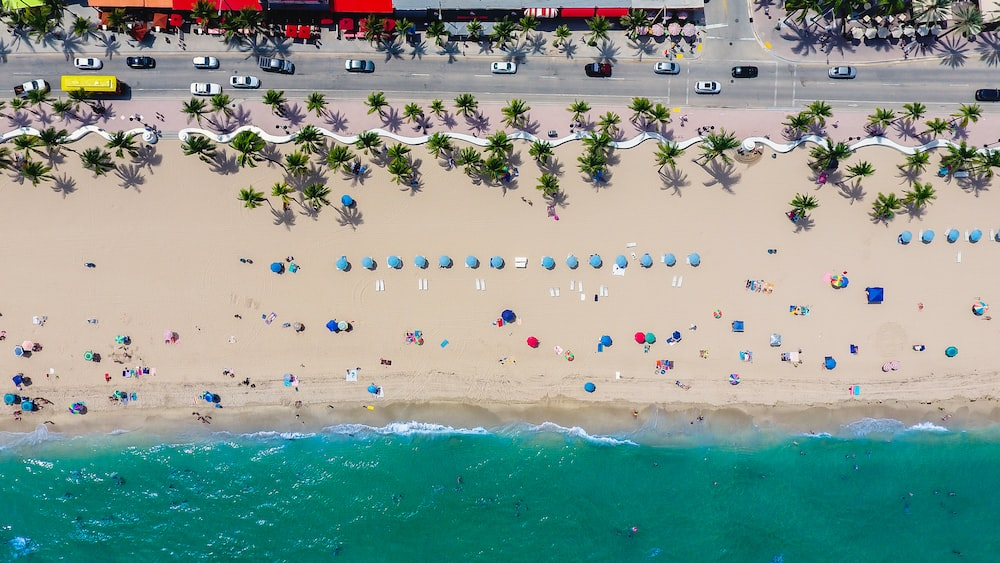 A Drone Shot Of People Vacationing On Beach Lined With Palm Trees And Blue Umbrellas