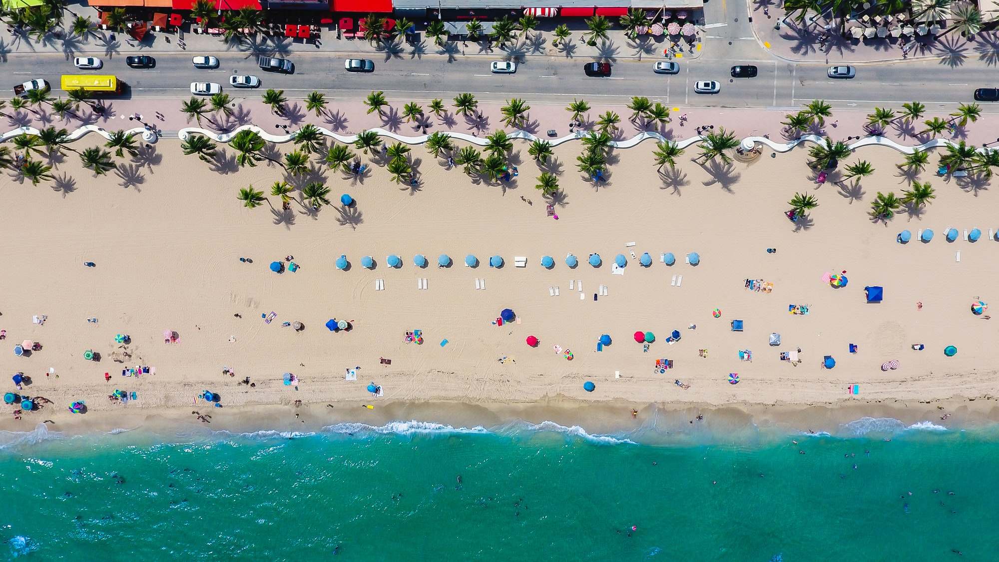 Fort Lauderdale in One Day