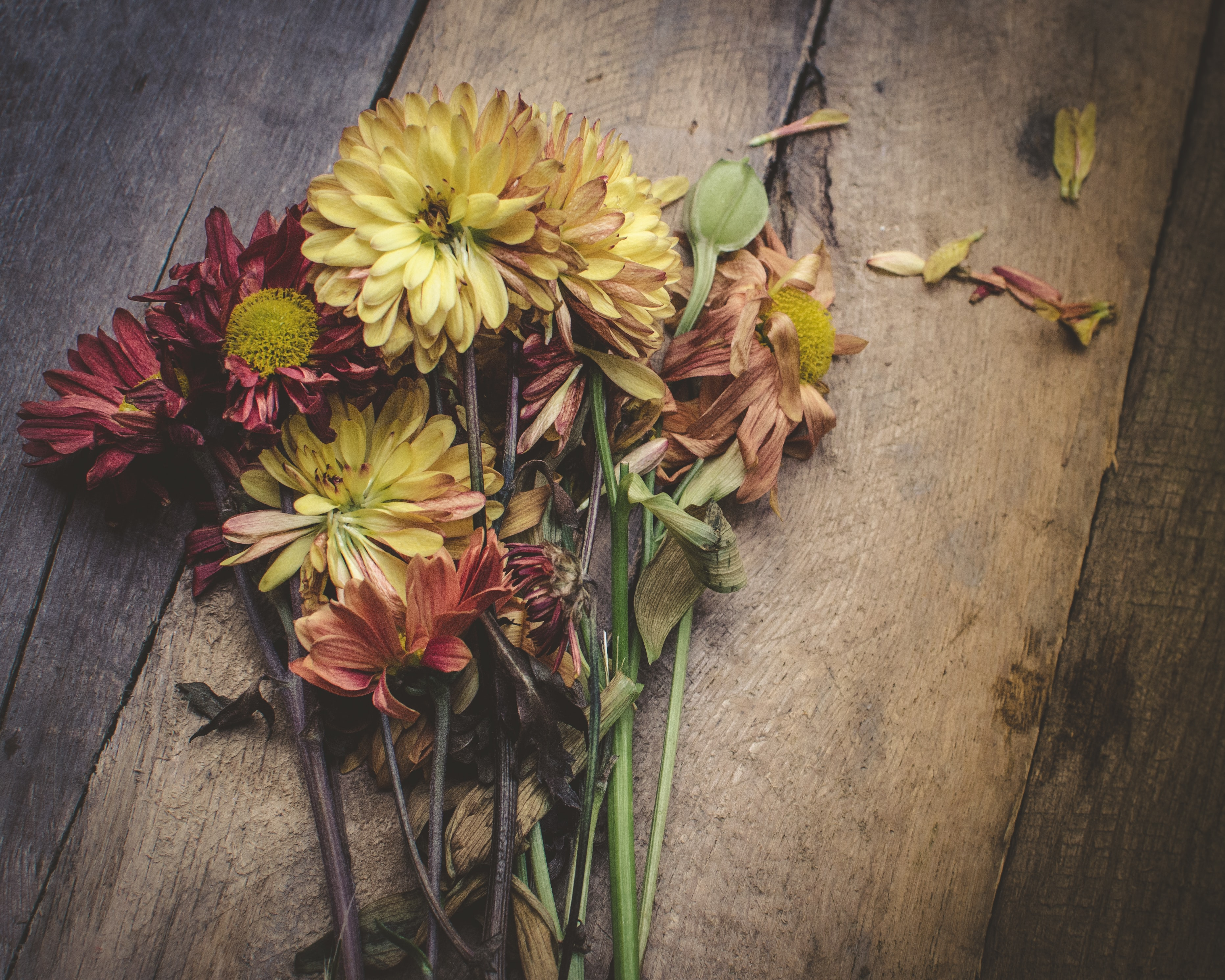 assorted flowers on brown wooden table
