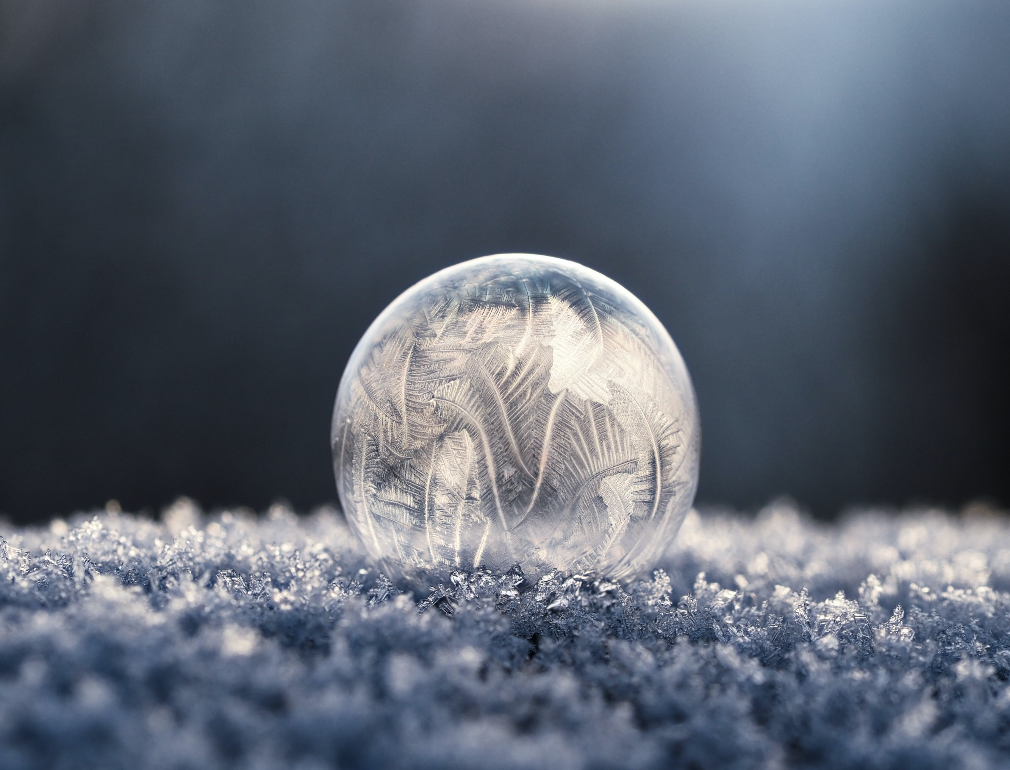 A macro view of a frozen winter ball on the cold winter ground.