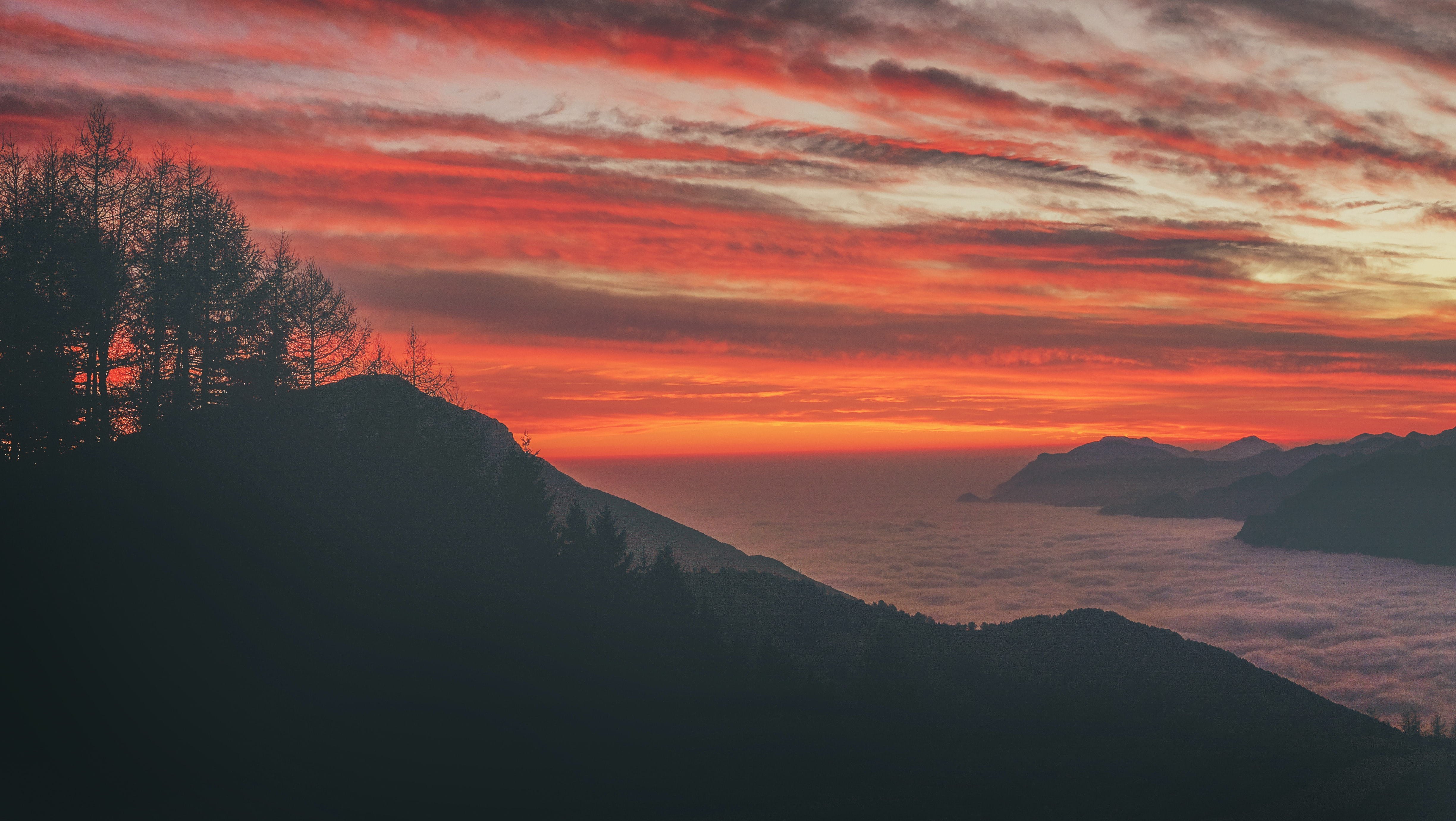 Silhouette of trees on a mountain against a red-streaked cloudy sky, fog and mountains in the distance
