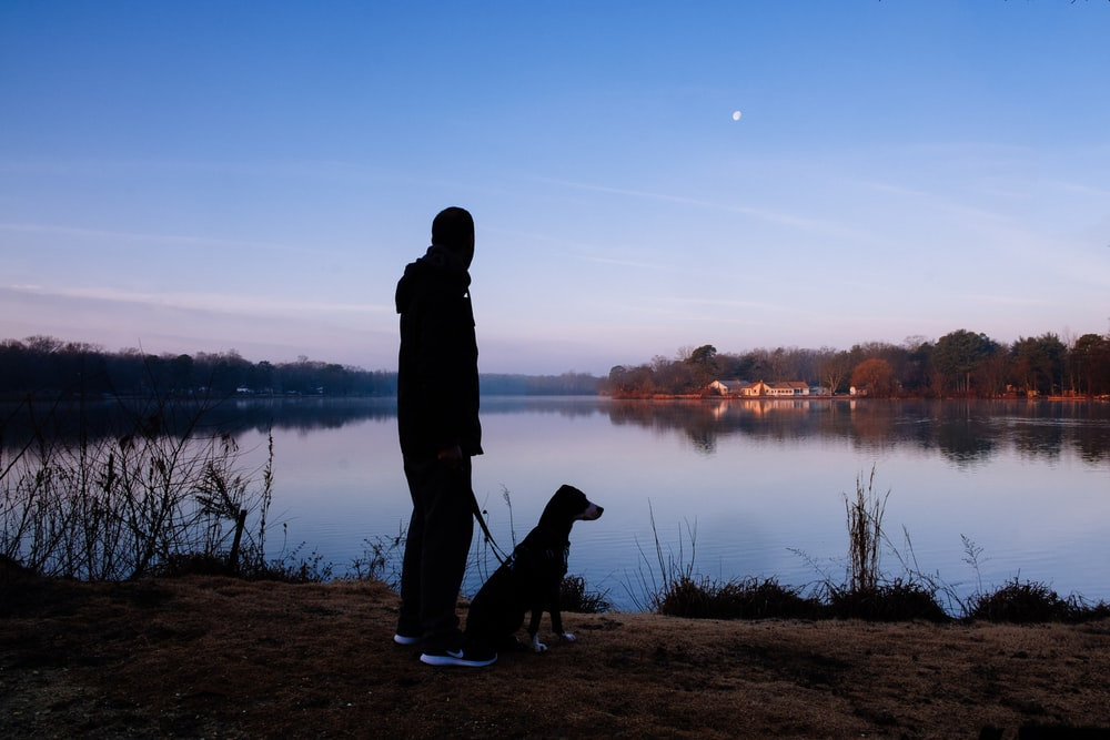 silhouette of standing man beside dog facing lake under clear blue sky