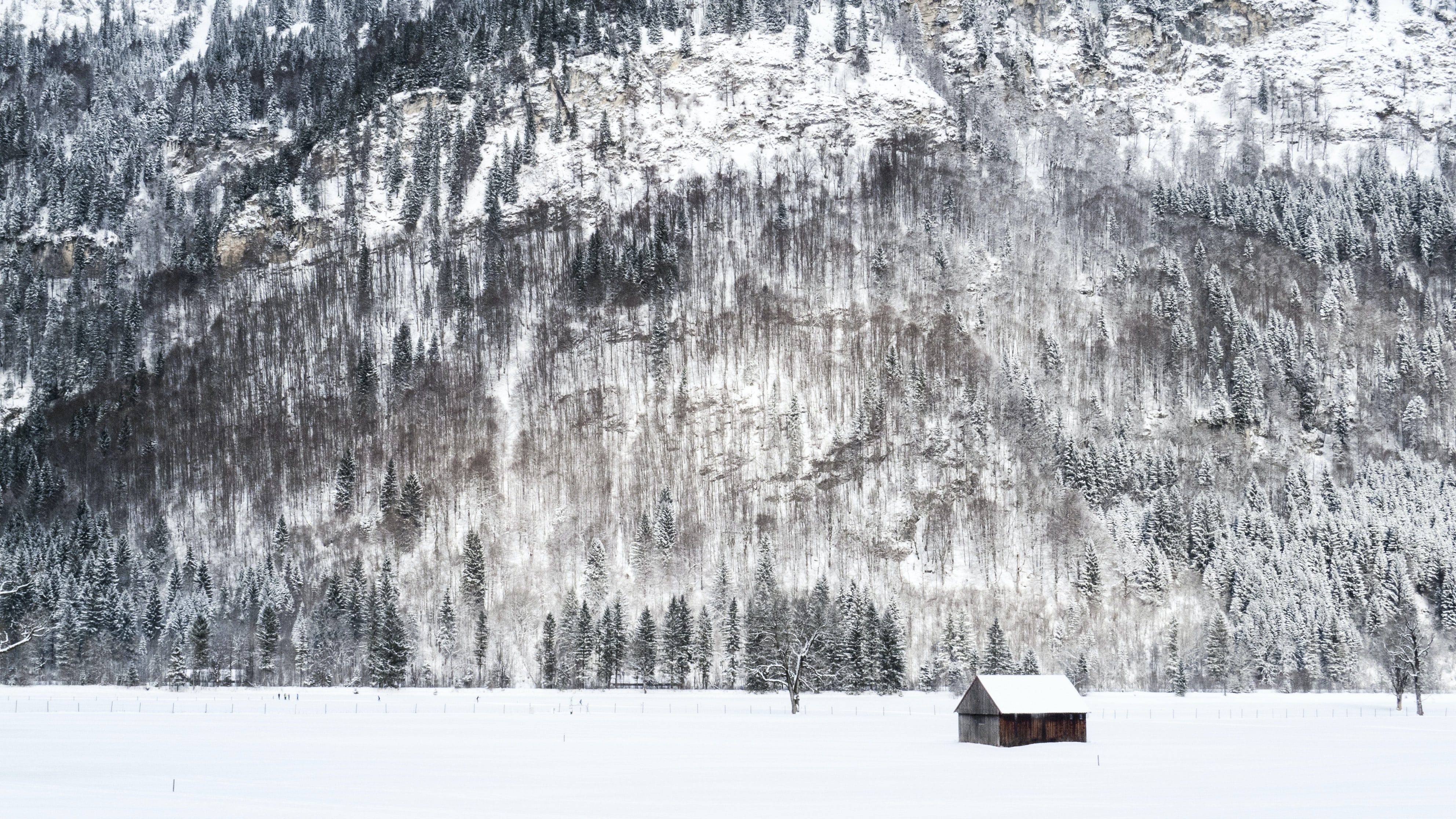 A wooden shack at the foot of a wooded mountain in the winter