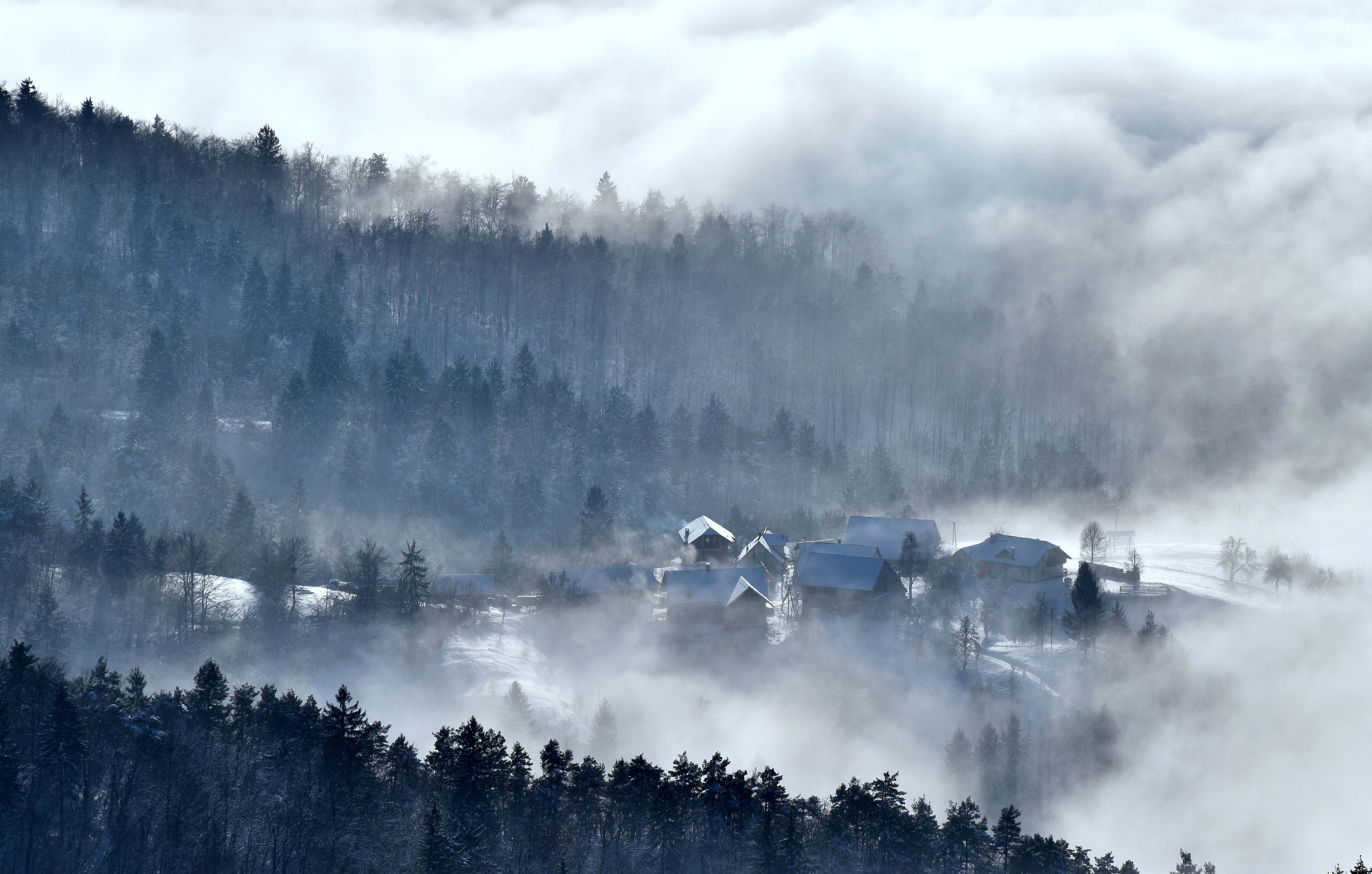 A village at the edge of a forest in dense fog in the winter