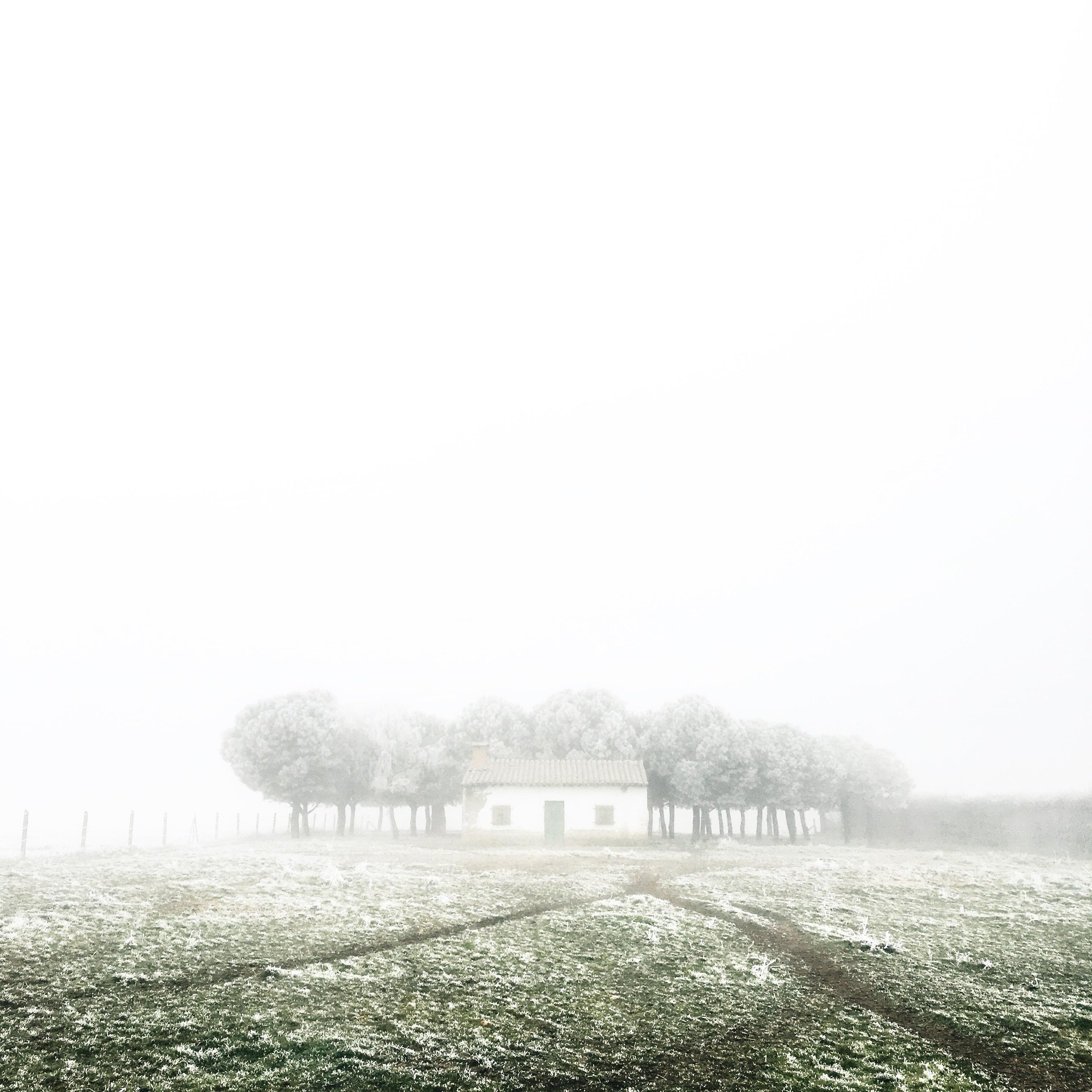 Quaint cabin in a frosty field on a foggy morning in Spain