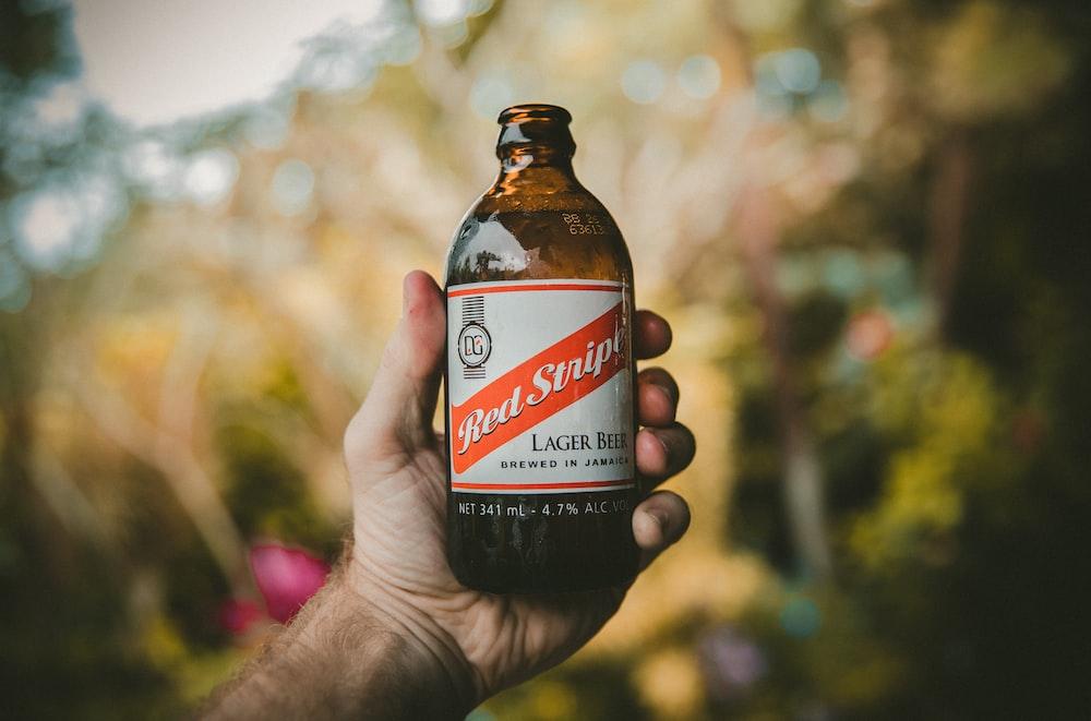 Photo Via: Unsplash.com, A man holding a Red Stripe beer in a glass bottle in Jamaica, Jakob Owens @jakobowens1