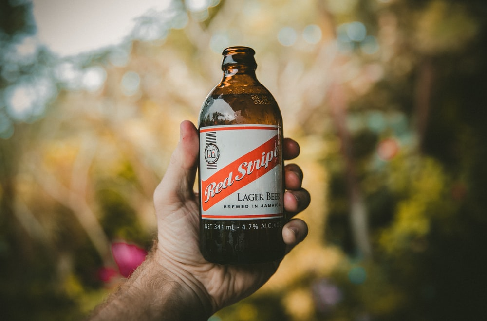 person holding Bed Script lager beer bottle shallow focus photography