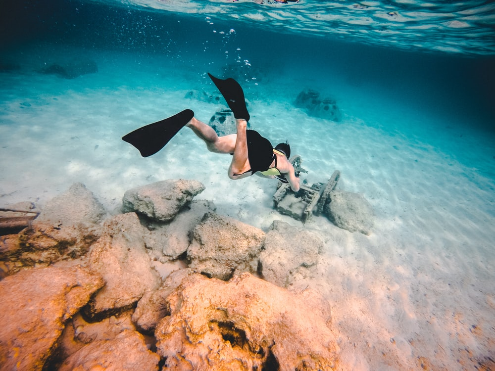 person wearing diving suit underwater shallow focus photography