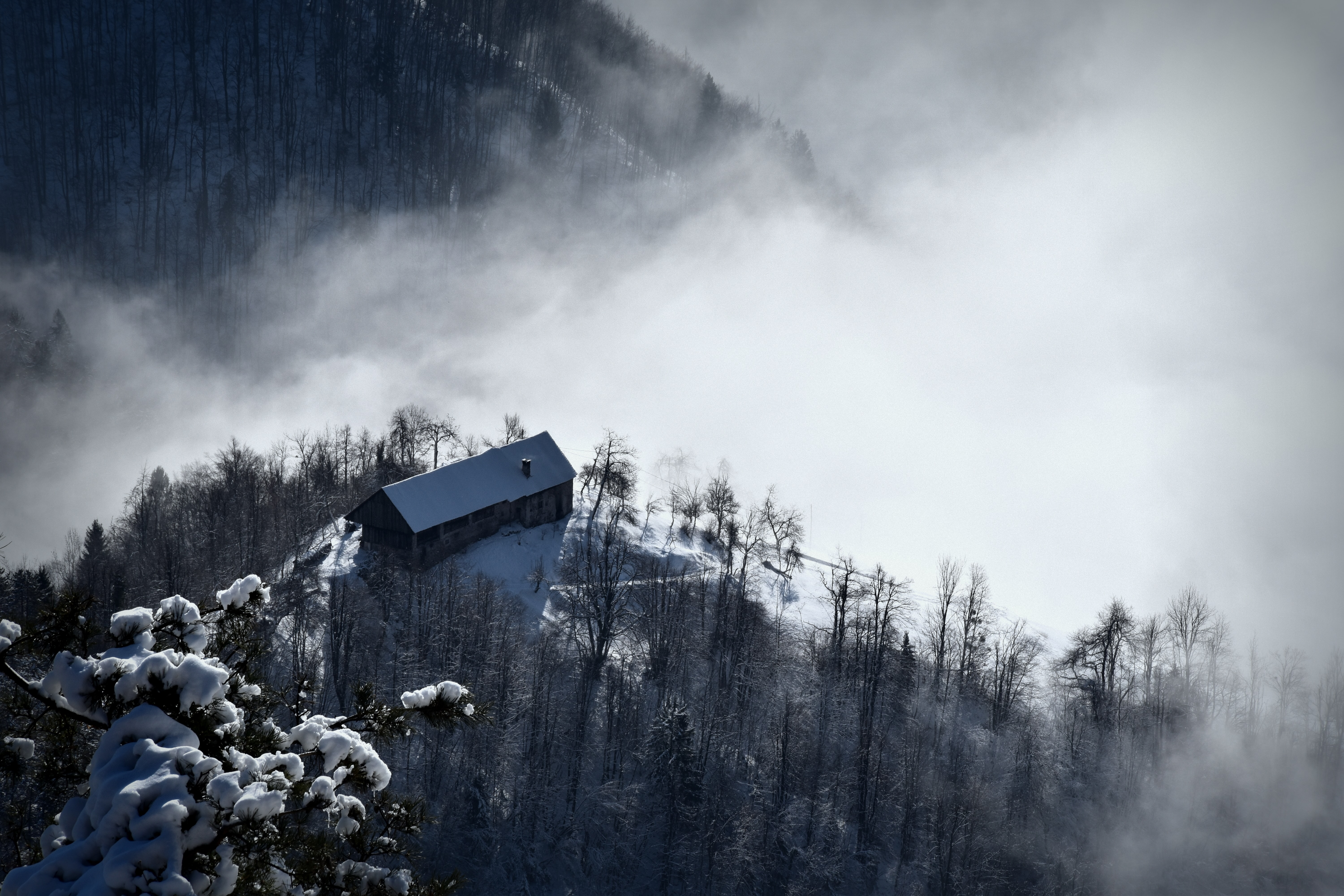 A foggy, cloudy sky casted above a forest with a building on top of the hill