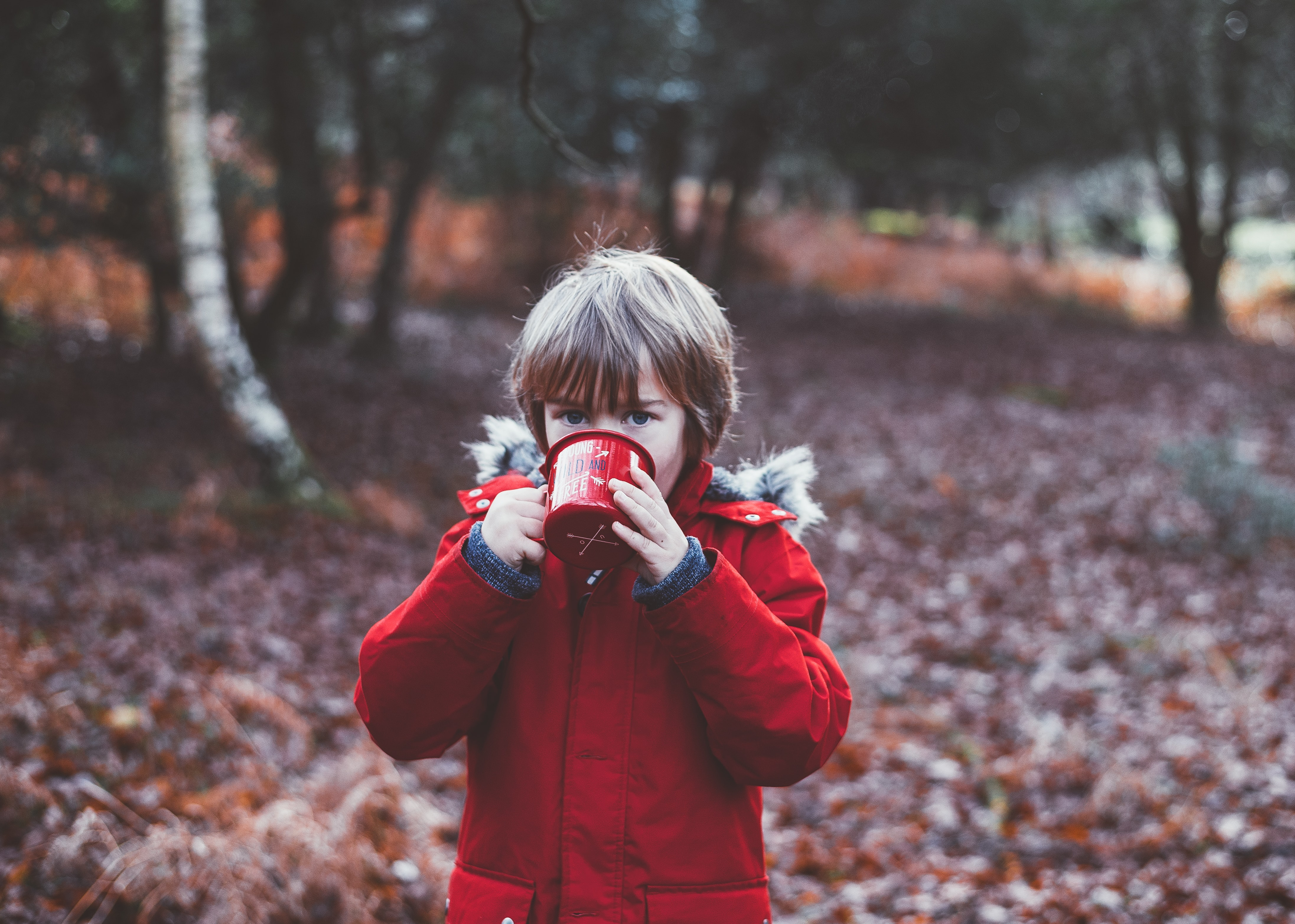 A small boy drinking out of an enamel cup in an autumn forest