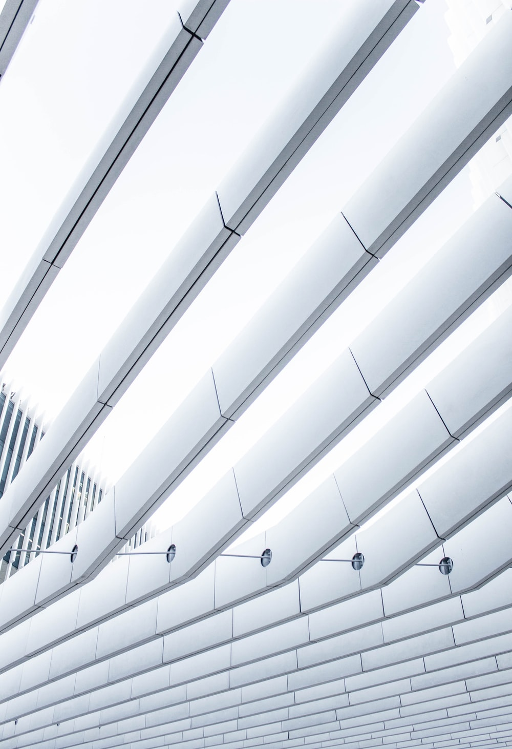 white ceiling during daytime