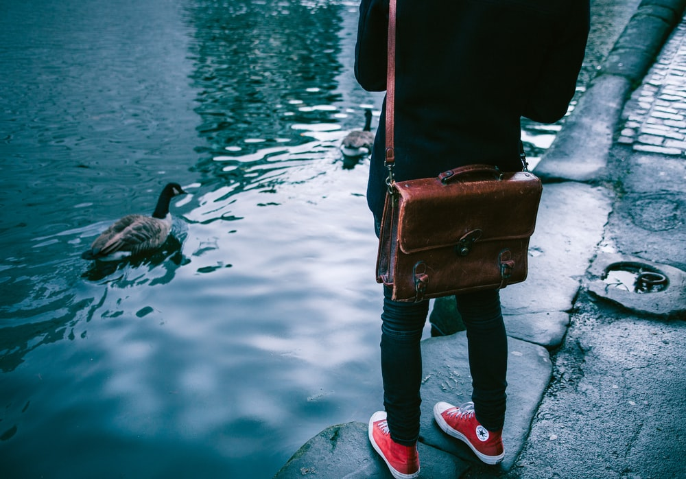person standing near pond with ducks