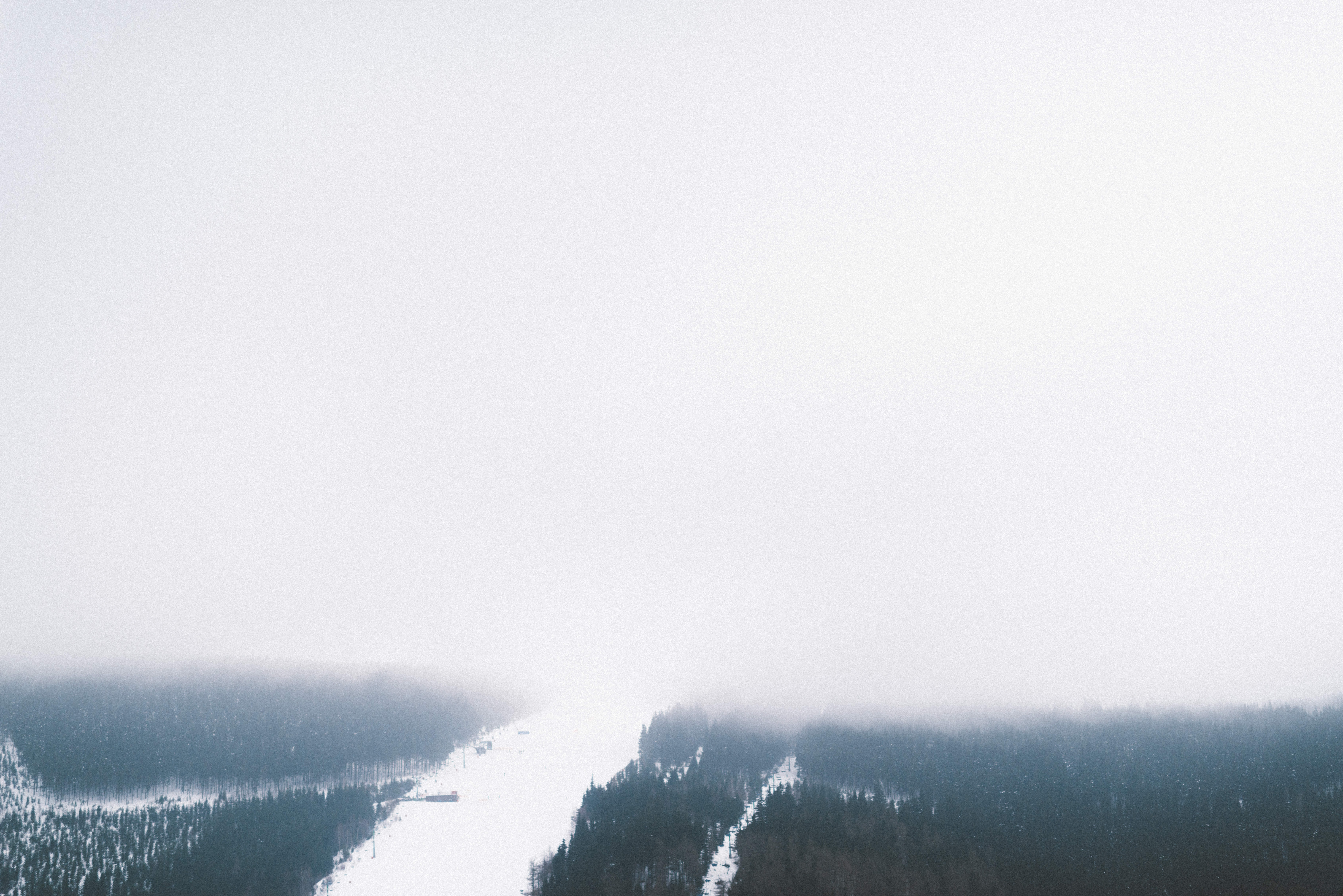 A high view of a snowy wooded slope shrouded in heavy mist in Špindlerův Mlýn