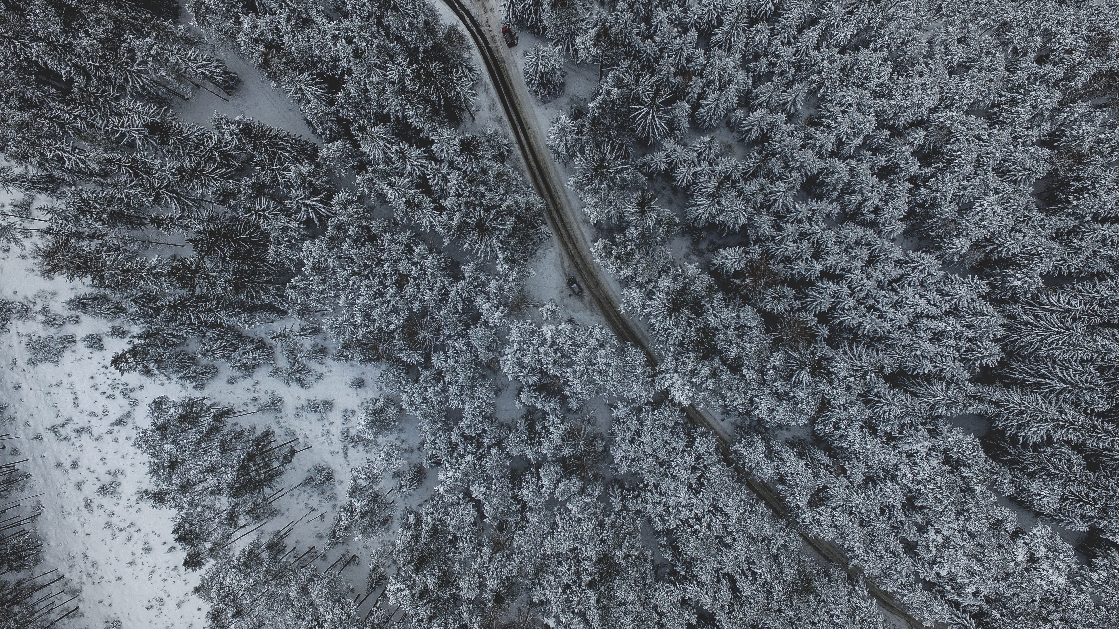 Country road winds through a snowy forest landscape